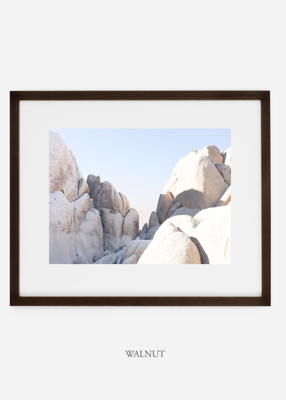 WilderCalifornia_walnut_JoshuaTree_No.18_interiordesign_prints_art.jpg
