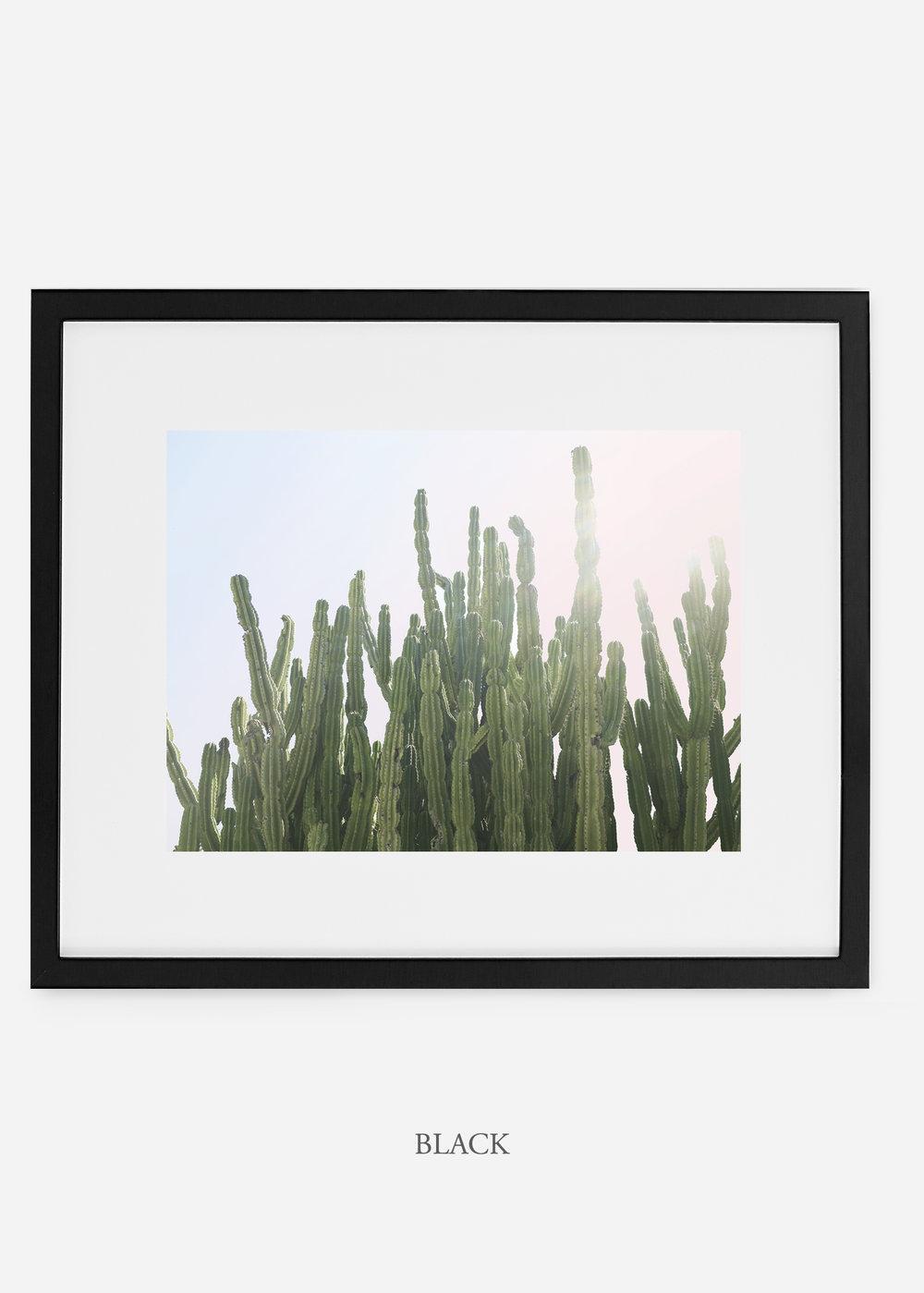 WilderCalifornia_black_interiordesign_cactusprint_MajesticCactusNo.3.jpg