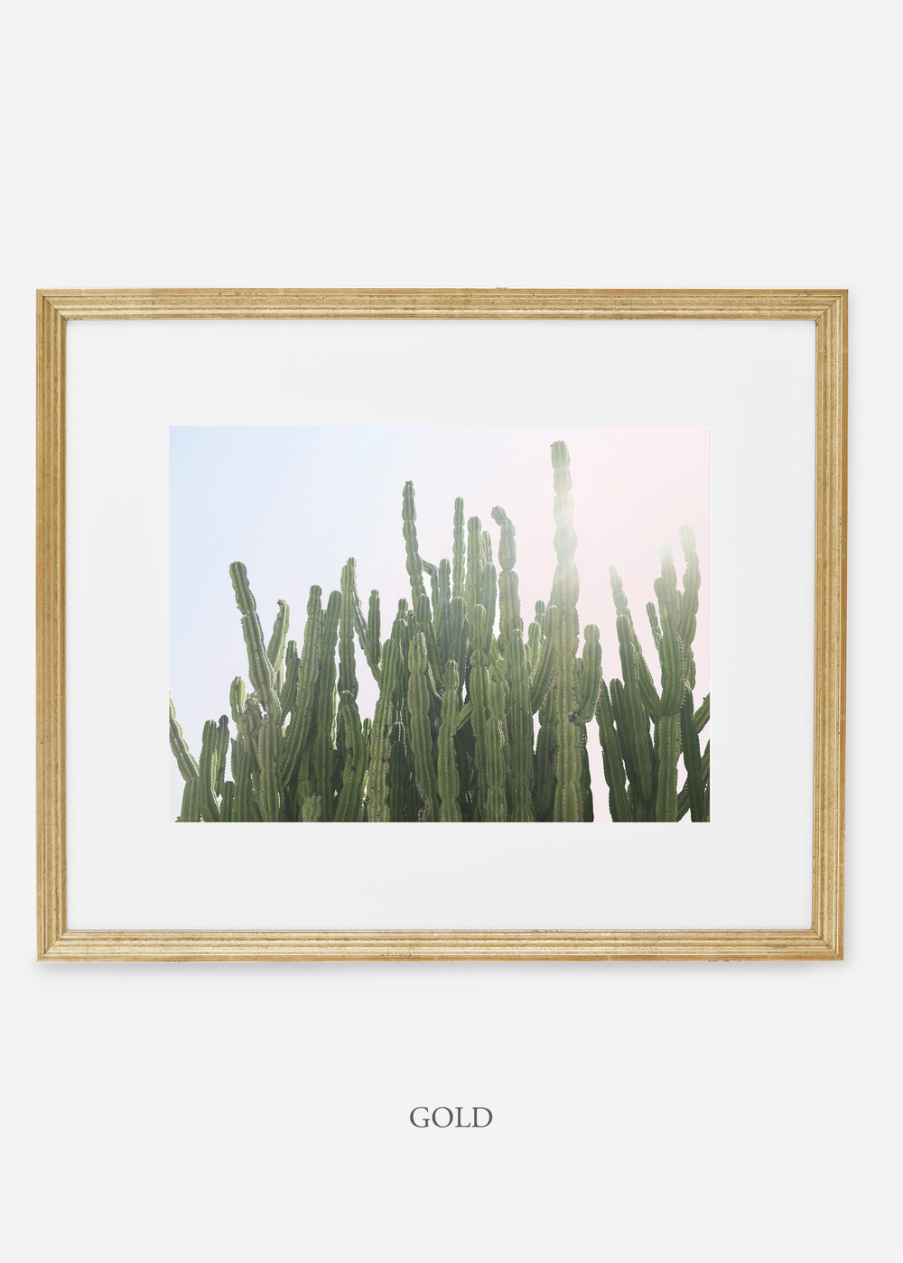 WilderCalifornia_gold_interiordesign_cactusprint_MajesticCactusNo.3.jpg