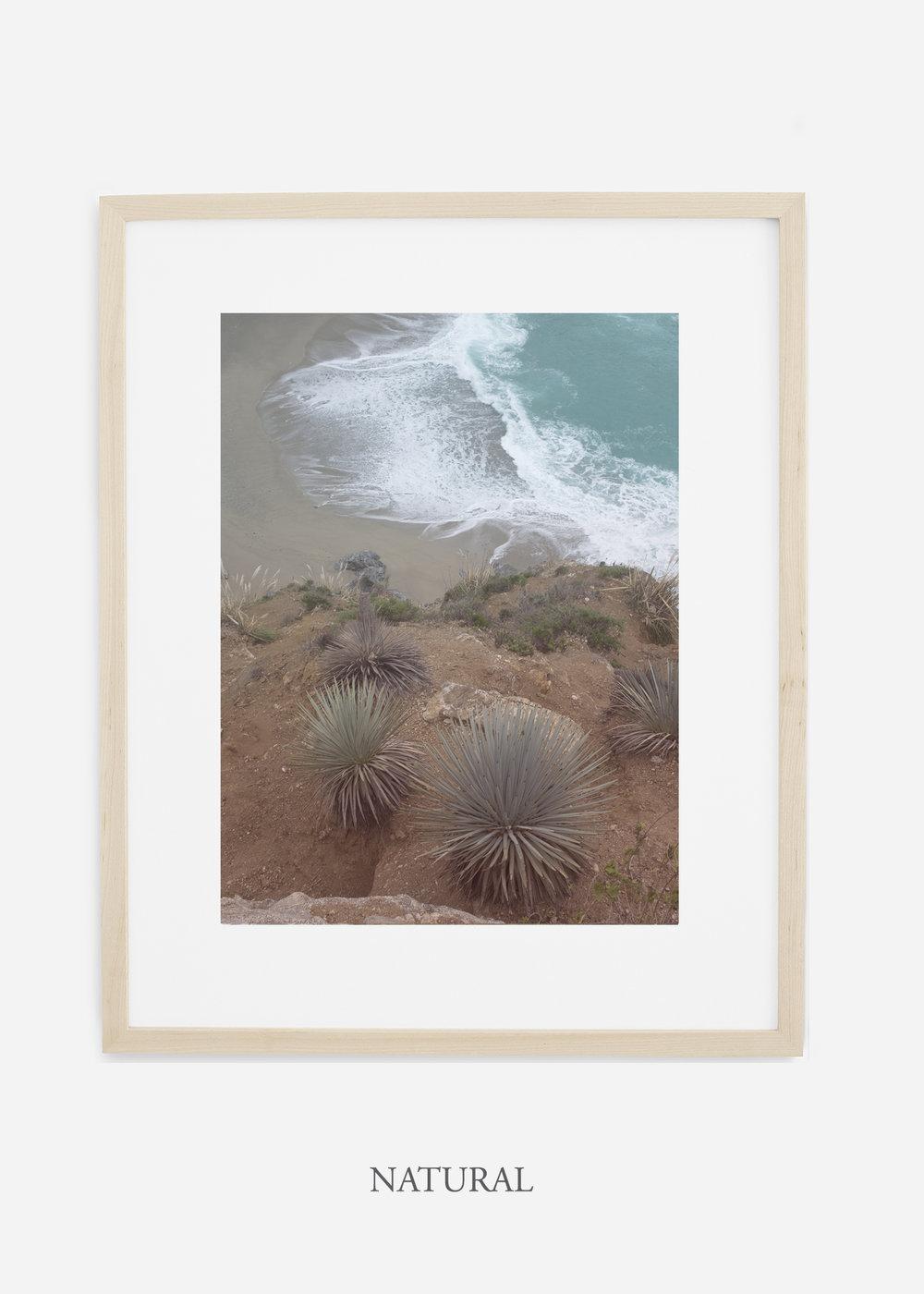 BigSurNo.3_naturalframe_BigSur_Ocean_Beach__Art_Photography_interiordesign_bohemian_cactusart.jpg