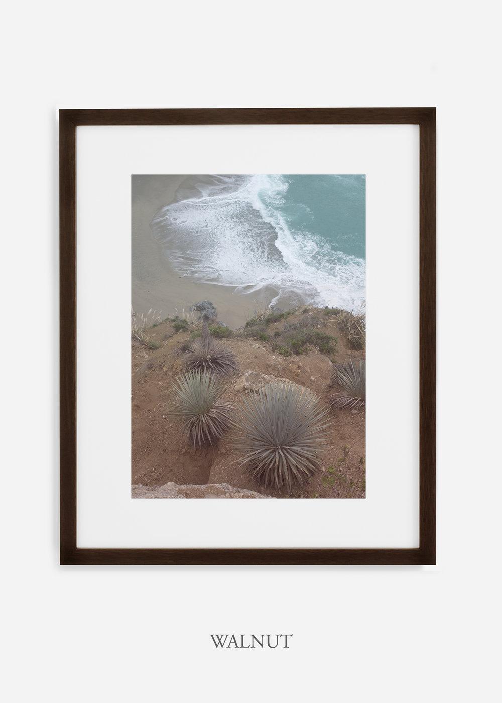 BigSurNo.3_walnutframe_BigSur_Ocean_Beach__Art_Photography_interiordesign_bohemian_cactusart.jpg