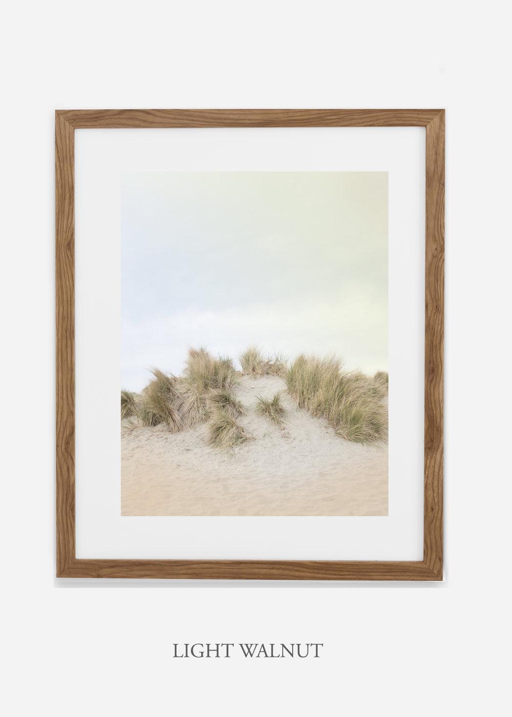 DunesNo.2_lightwalnut_BigSur_Ocean_Beach__Art_Photography_interiordesign_bohemian_cactusart.jpg
