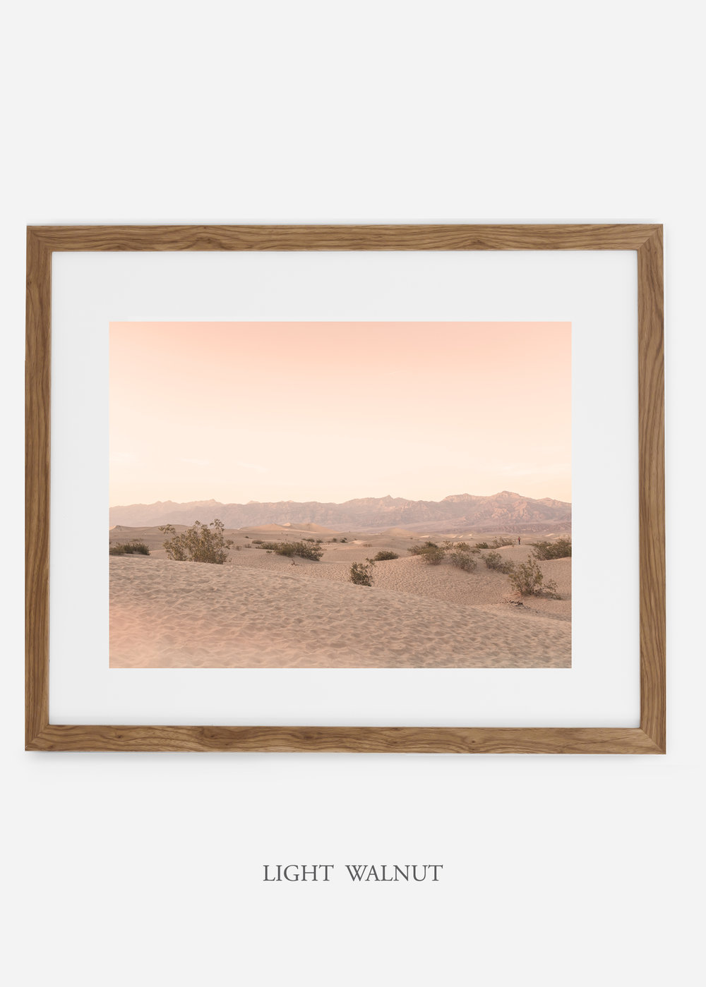 wildercalifornia_lightwalnutframe_deathvalley_4_minimal_cactus_art_interiordesign_blackandwhite.jpg
