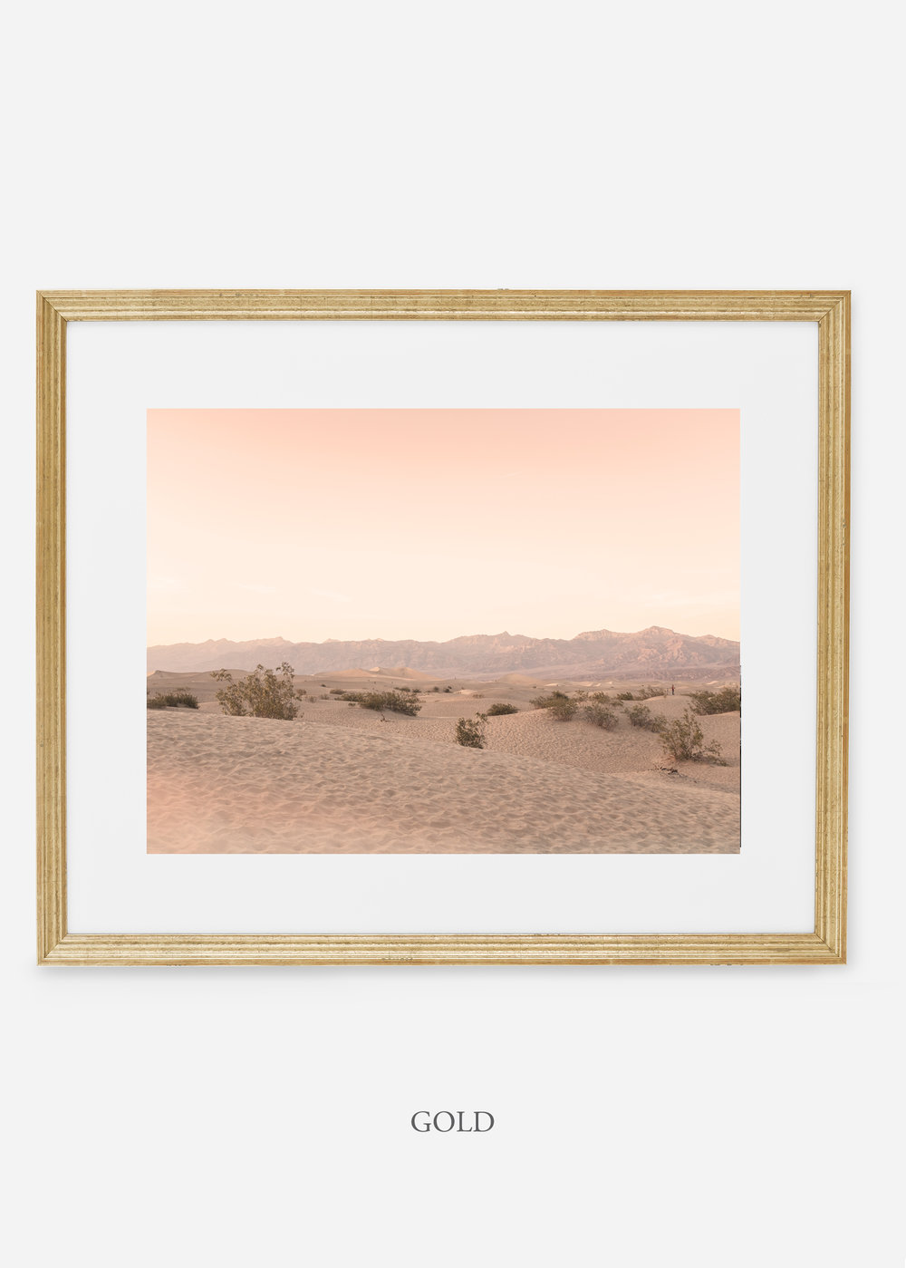 wildercalifornia_goldframe_deathvalley_4_minimal_cactus_art_interiordesign_blackandwhite.jpg