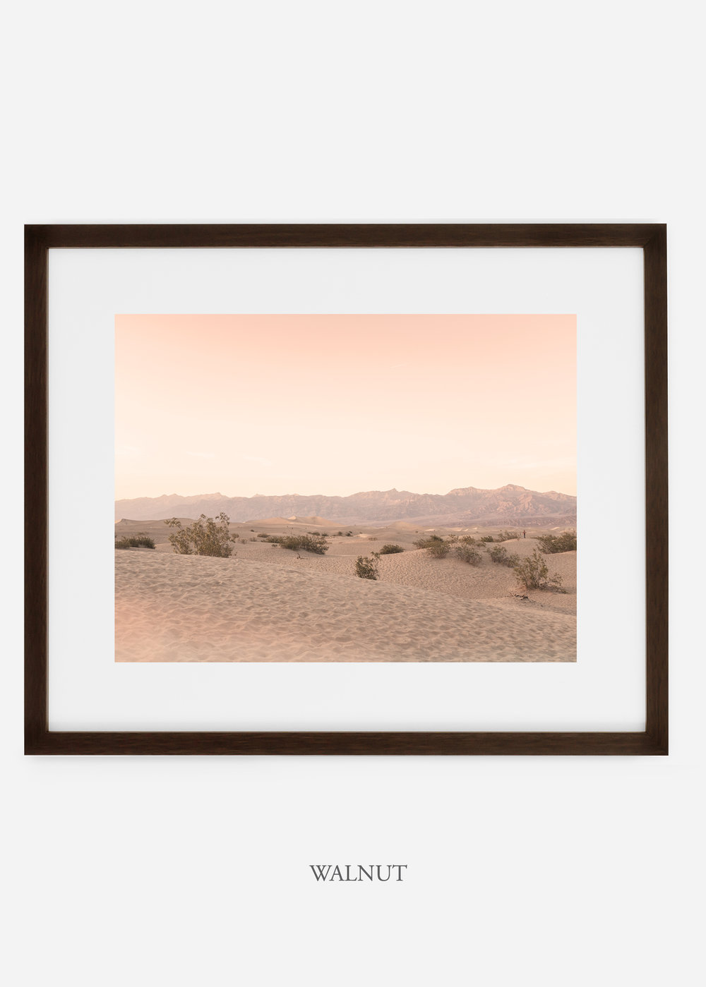 wildercalifornia_walnutframe_deathvalley_4_minimal_cactus_art_interiordesign_blackandwhite.jpg