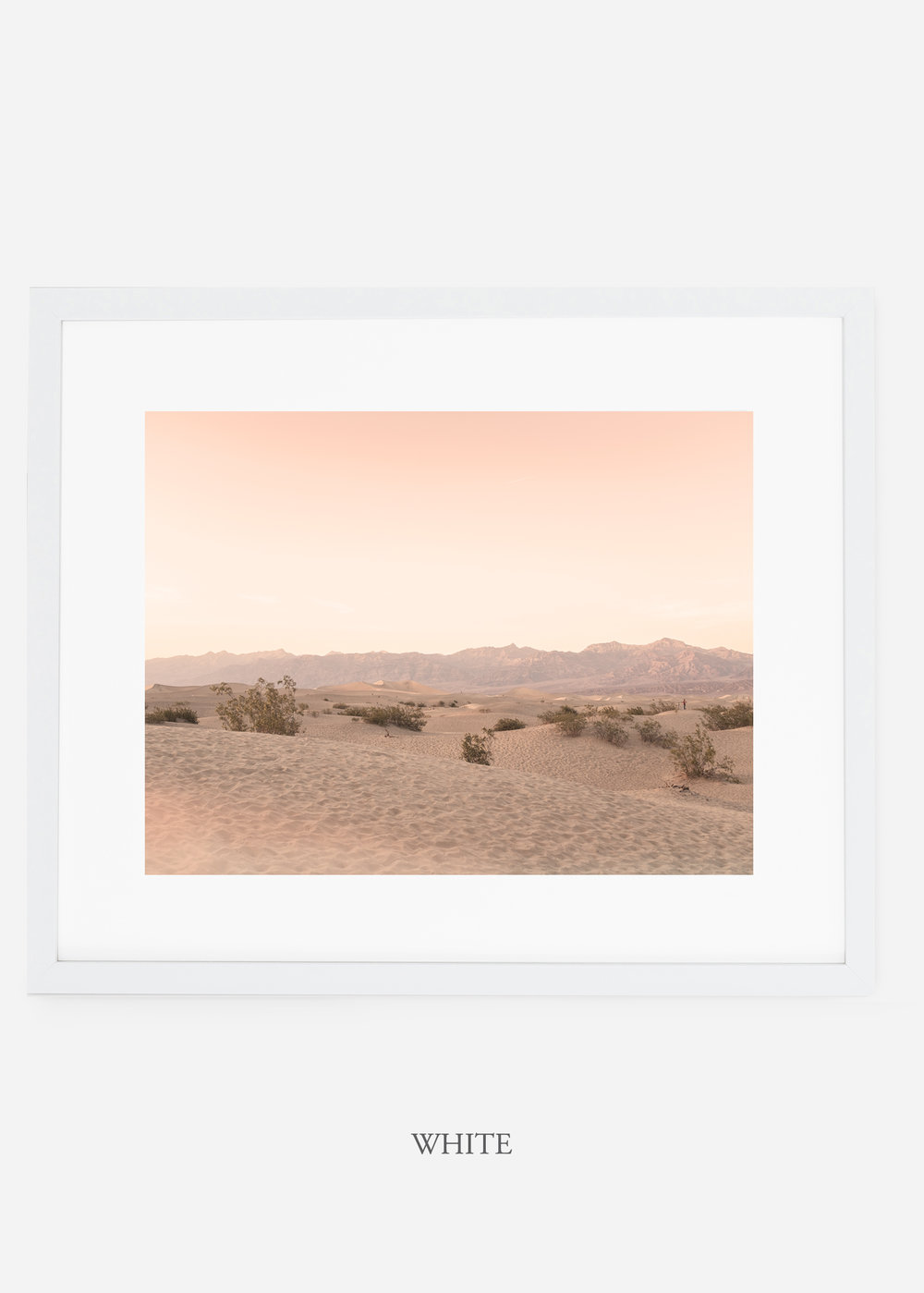 wildercalifornia_whiteframe_deathvalley_4_minimal_cactus_art_interiordesign_blackandwhite.jpg