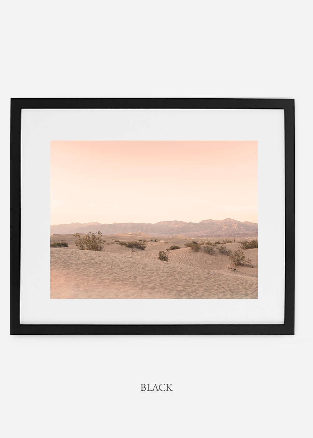 wildercalifornia_blackframe__deathvalley_4_cactus_art_interiordesign_blackandwhite.jpg