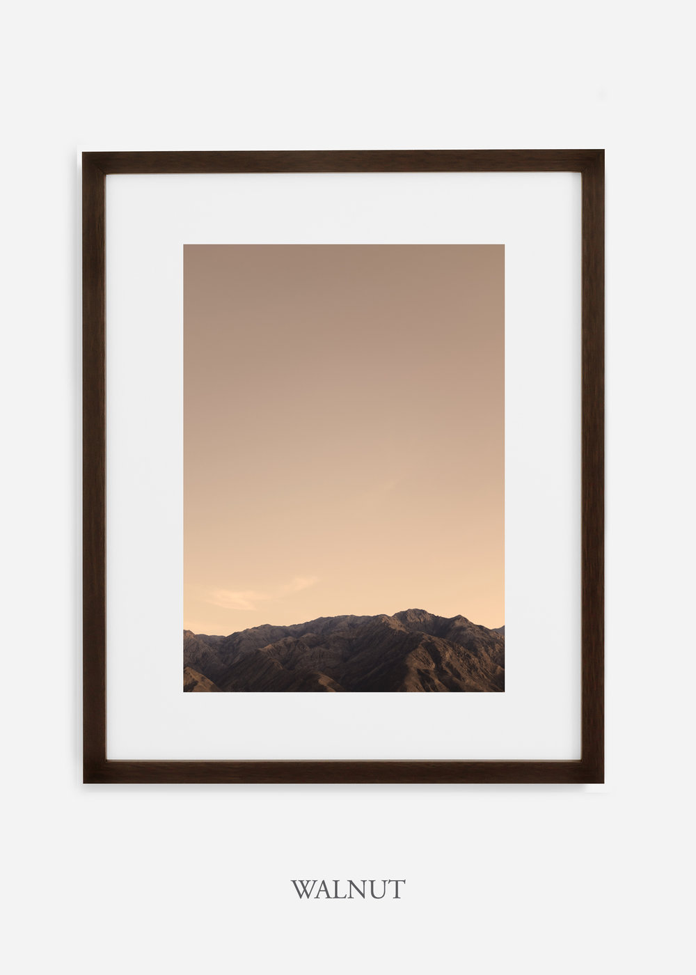 DeathValley_walnutframe__No.1_interiordesign_cactusprint_art.jpg