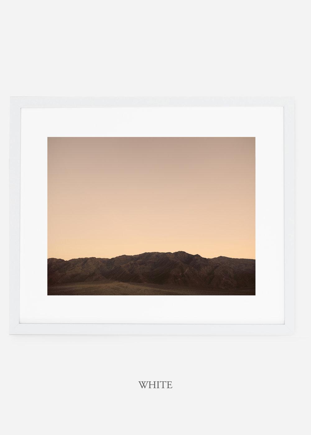 wildercalifornia_whiteframe_deathvalley_5_minimal_cactus_art_interiordesign_blackandwhite.jpg