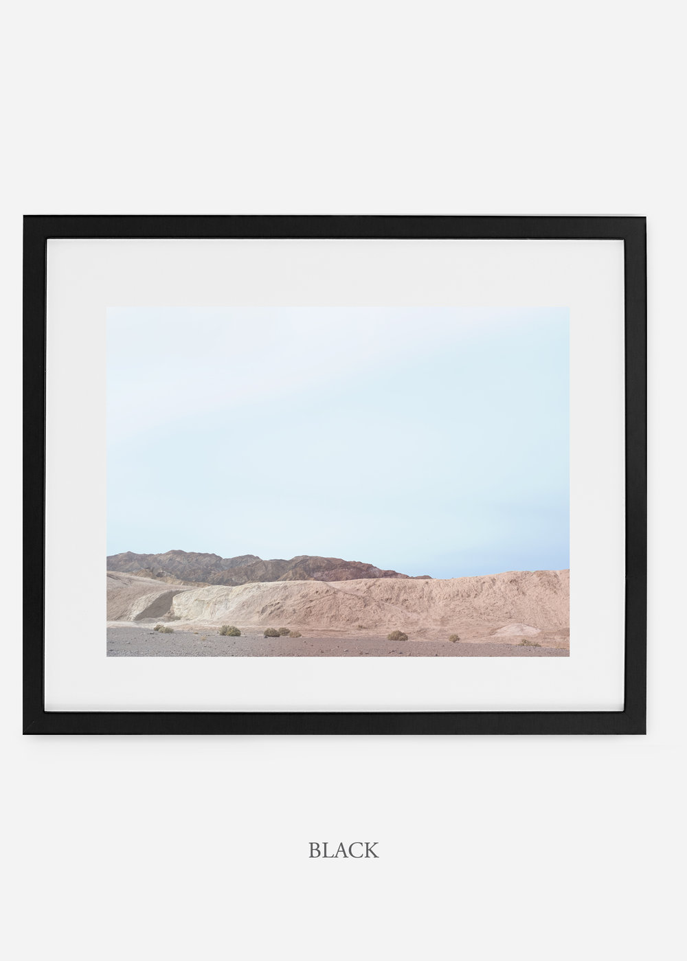 wildercalifornia_blackframe__deathvalley_6_cactus_art_interiordesign_blackandwhite.jpg
