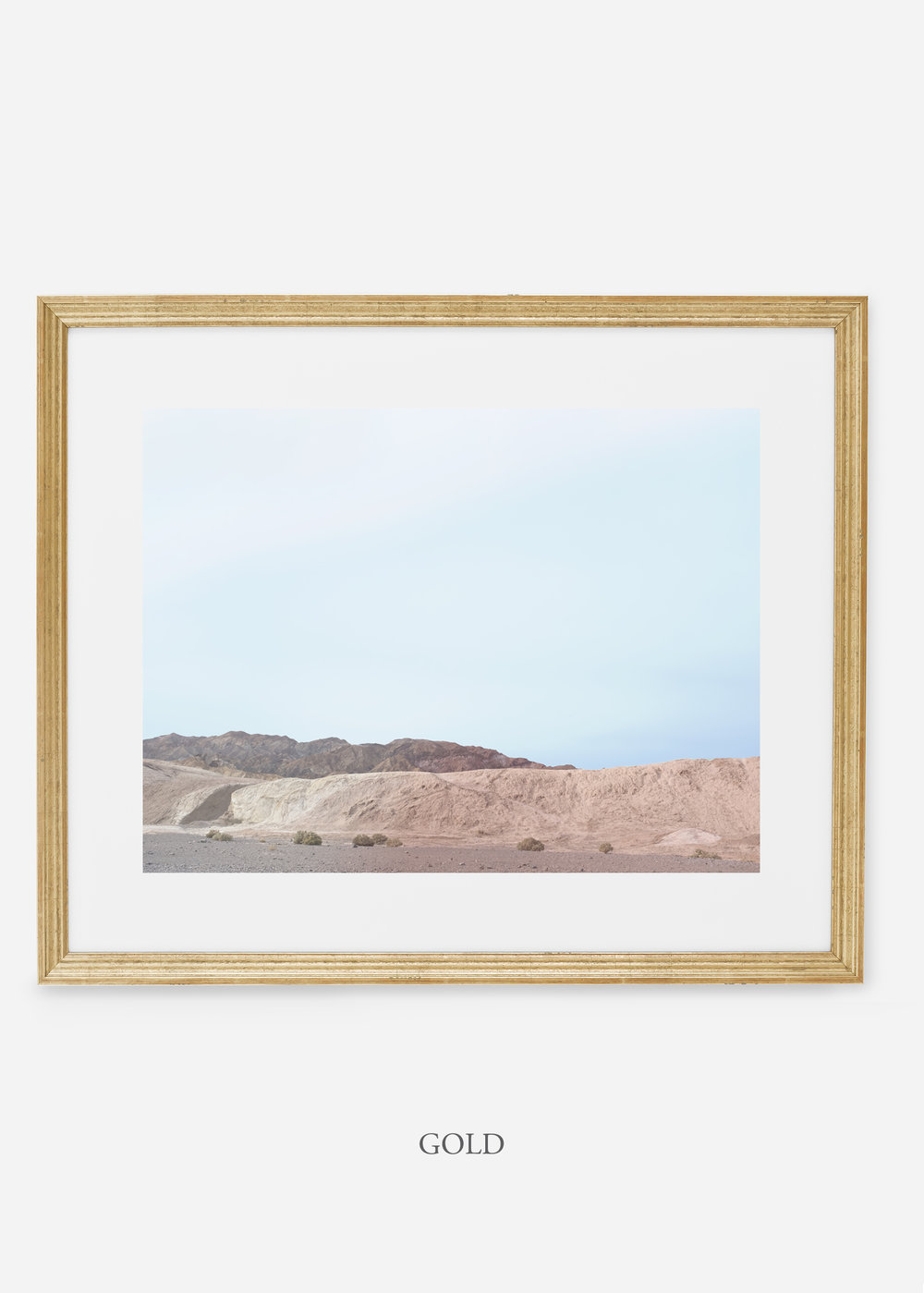 wildercalifornia_goldframe_deathvalley_6_minimal_cactus_art_interiordesign_blackandwhite.jpg