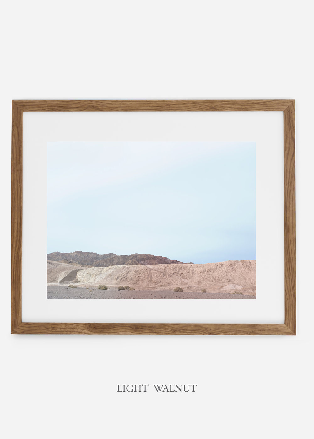 wildercalifornia_lightwalnutframe_deathvalley_6_minimal_cactus_art_interiordesign_blackandwhite.jpg