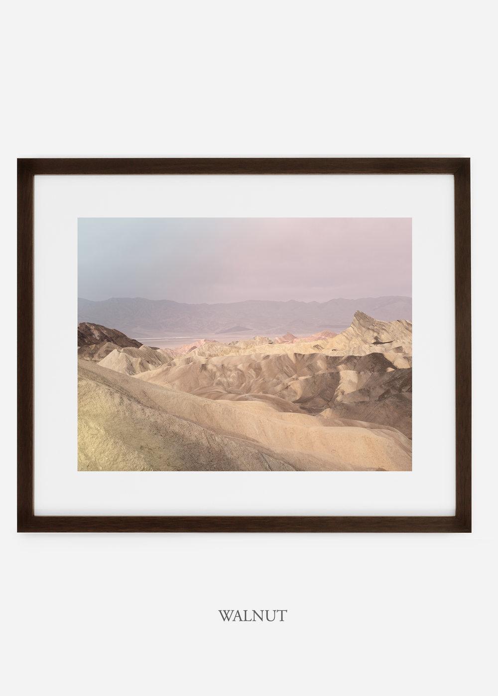 wildercalifornia_walnutframe_deathvalley_10_minimal_cactus_art_interiordesign_blackandwhite.jpg