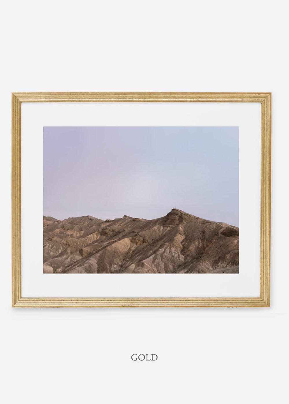 wildercalifornia_goldframe_deathvalley_12_minimal_cactus_art_interiordesign_blackandwhite.jpg