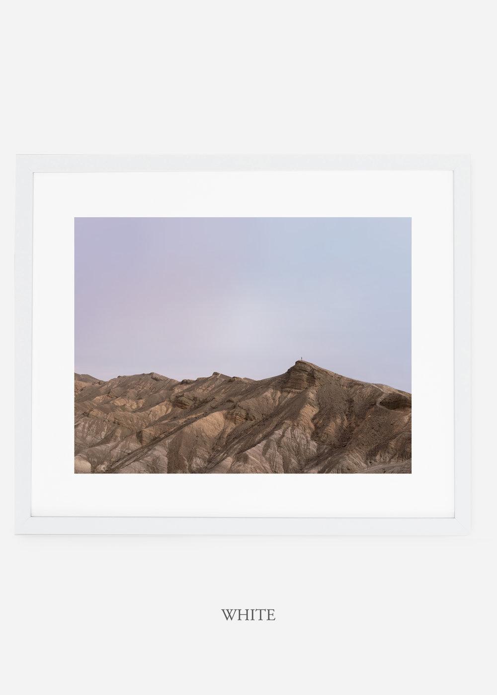 wildercalifornia_whiteframe_deathvalley_12_minimal_cactus_art_interiordesign_.jpg