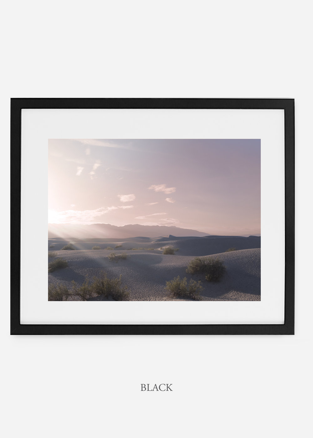 wildercalifornia_blackframe__deathvalley_14_cactus_art_interiordesign_blackandwhite.jpg