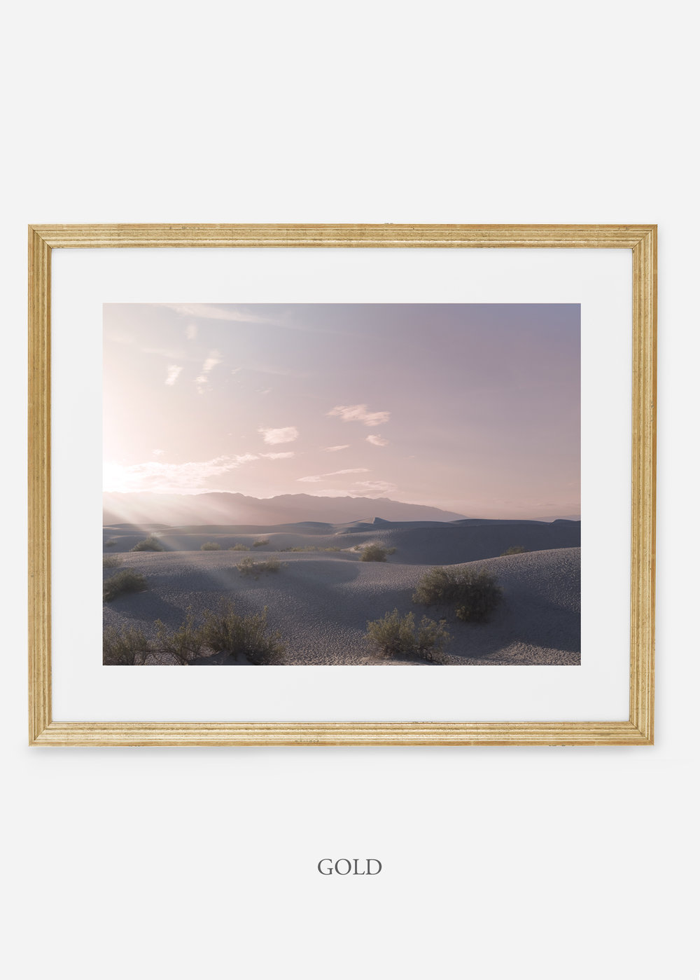wildercalifornia_goldframe_deathvalley_14_minimal_cactus_art_interiordesign_blackandwhite.jpg
