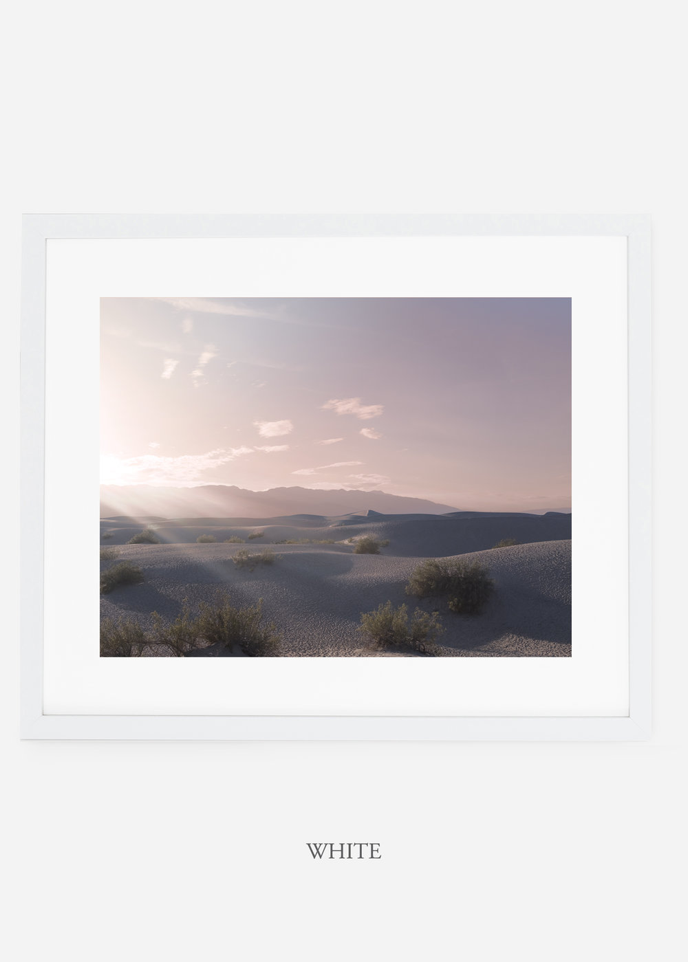 wildercalifornia_whiteframe_deathvalley_14_minimal_cactus_art_interiordesign_.jpg