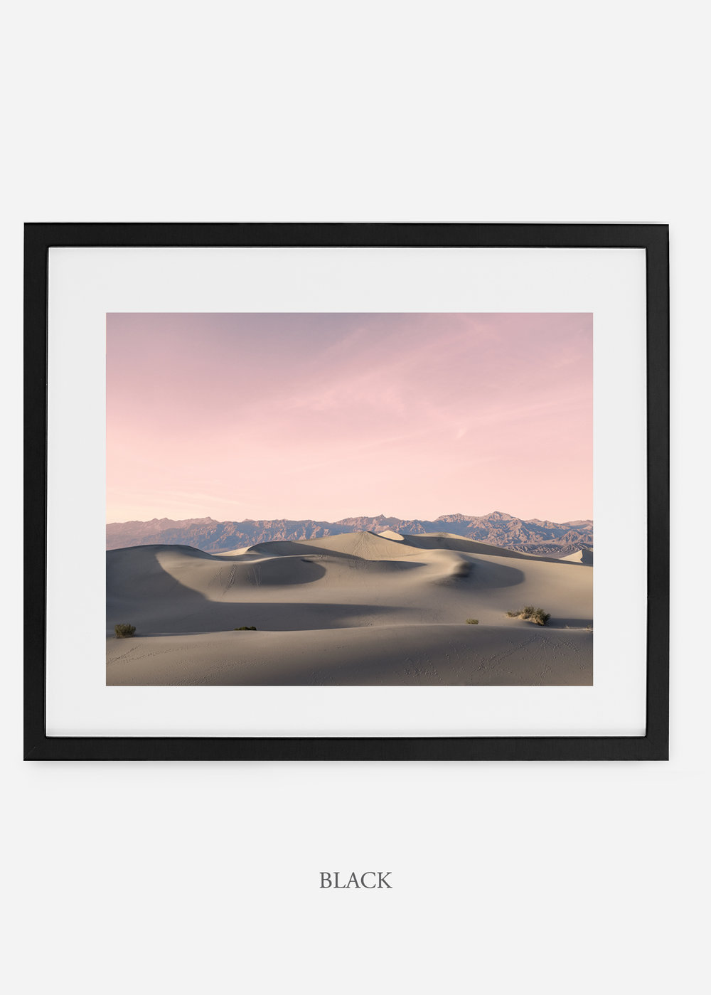 wildercalifornia_blackframe__deathvalley_17_cactus_art_interiordesign_blackandwhite.jpg