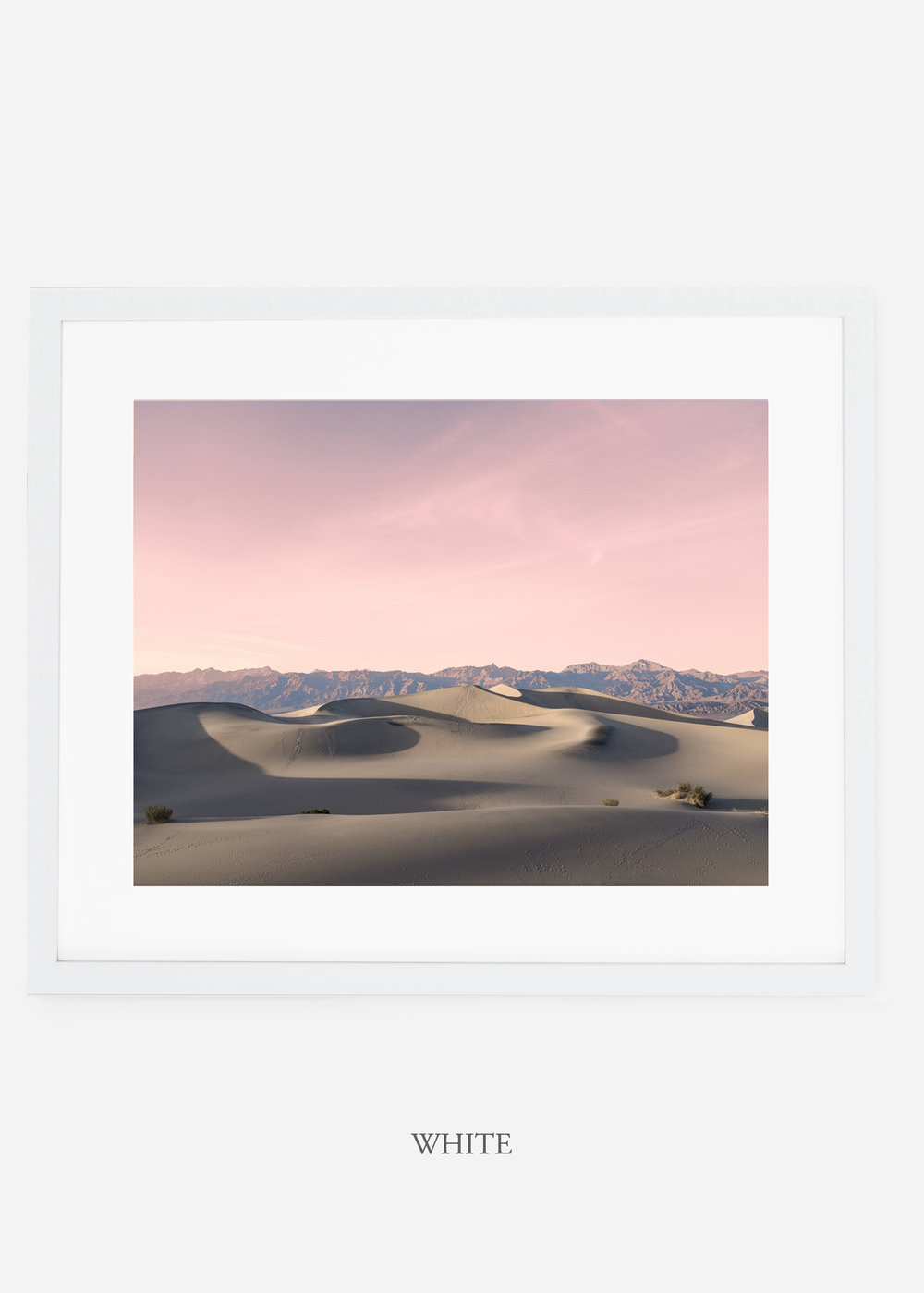 wildercalifornia_whiteframe_deathvalley_17_minimal_cactus_art_interiordesign_.jpg