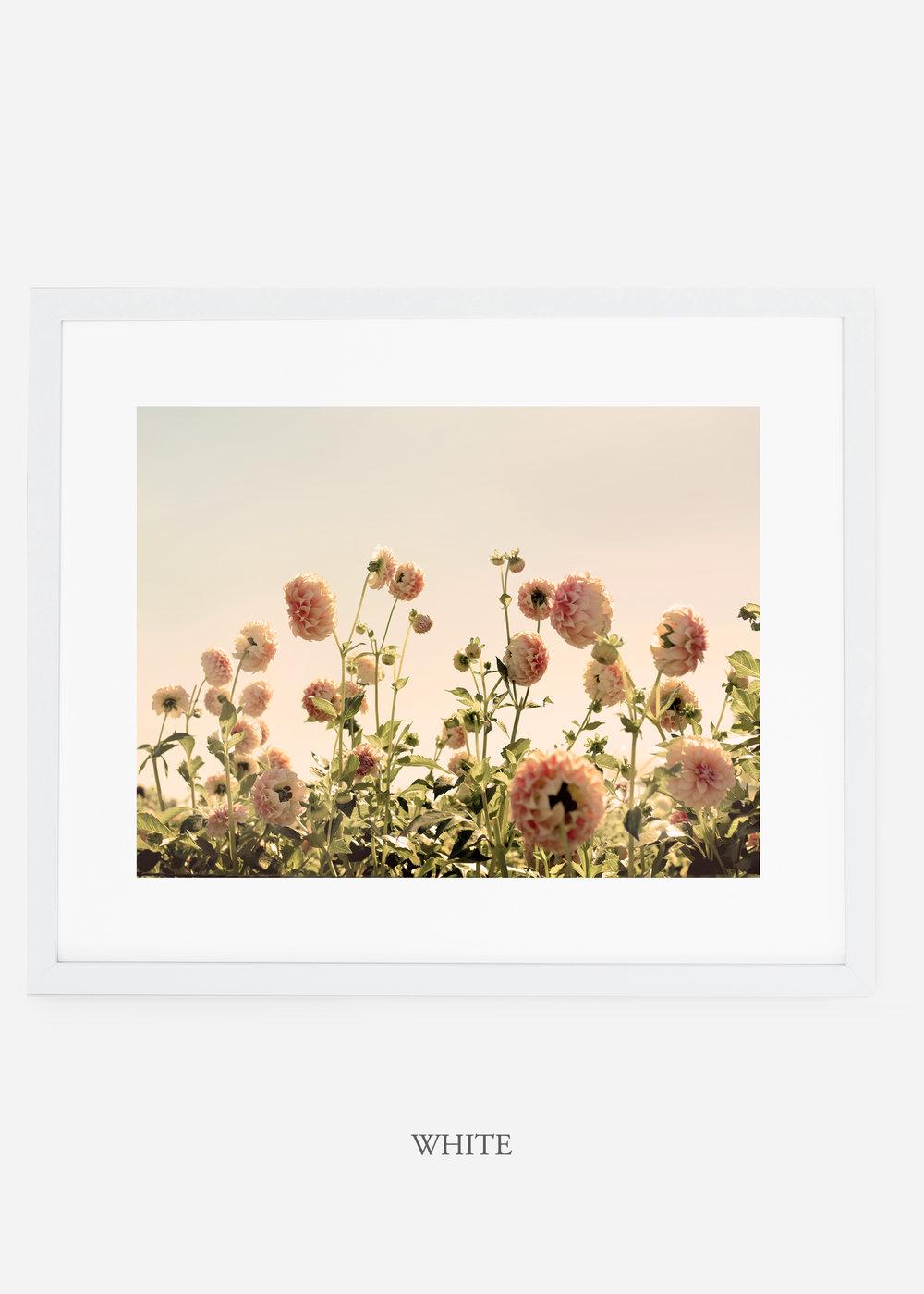 WhiteFrame_DahliaNo.1_WilderCalifornia_Art_Floral_Homedecor_Prints_Dahlia_Botanical_Artwork_Interiordesign.jpg