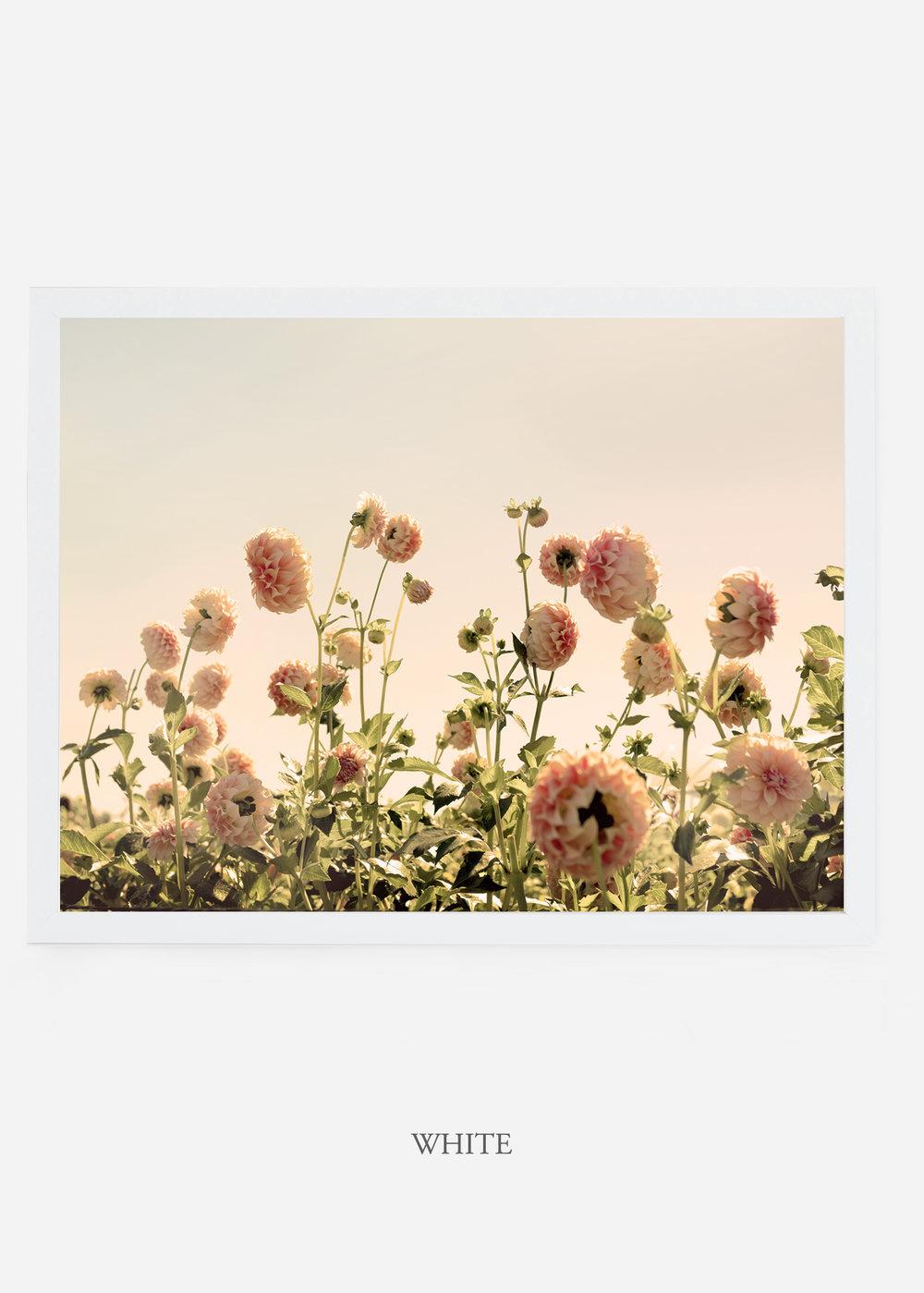 NoMat_WhiteFrame_DahliaNo.1_WilderCalifornia_Art_Floral_Homedecor_Prints_Dahlia_Botanical_Artwork_Interiordesign.jpg