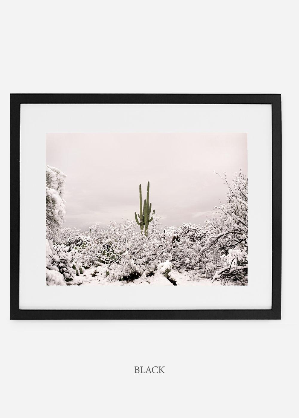 blackframe-saguaroNo.1-wildercalifornia-art-wallart-cactusprint-homedecor-prints-arizona-botanical-artwork-interiordesign.jpg