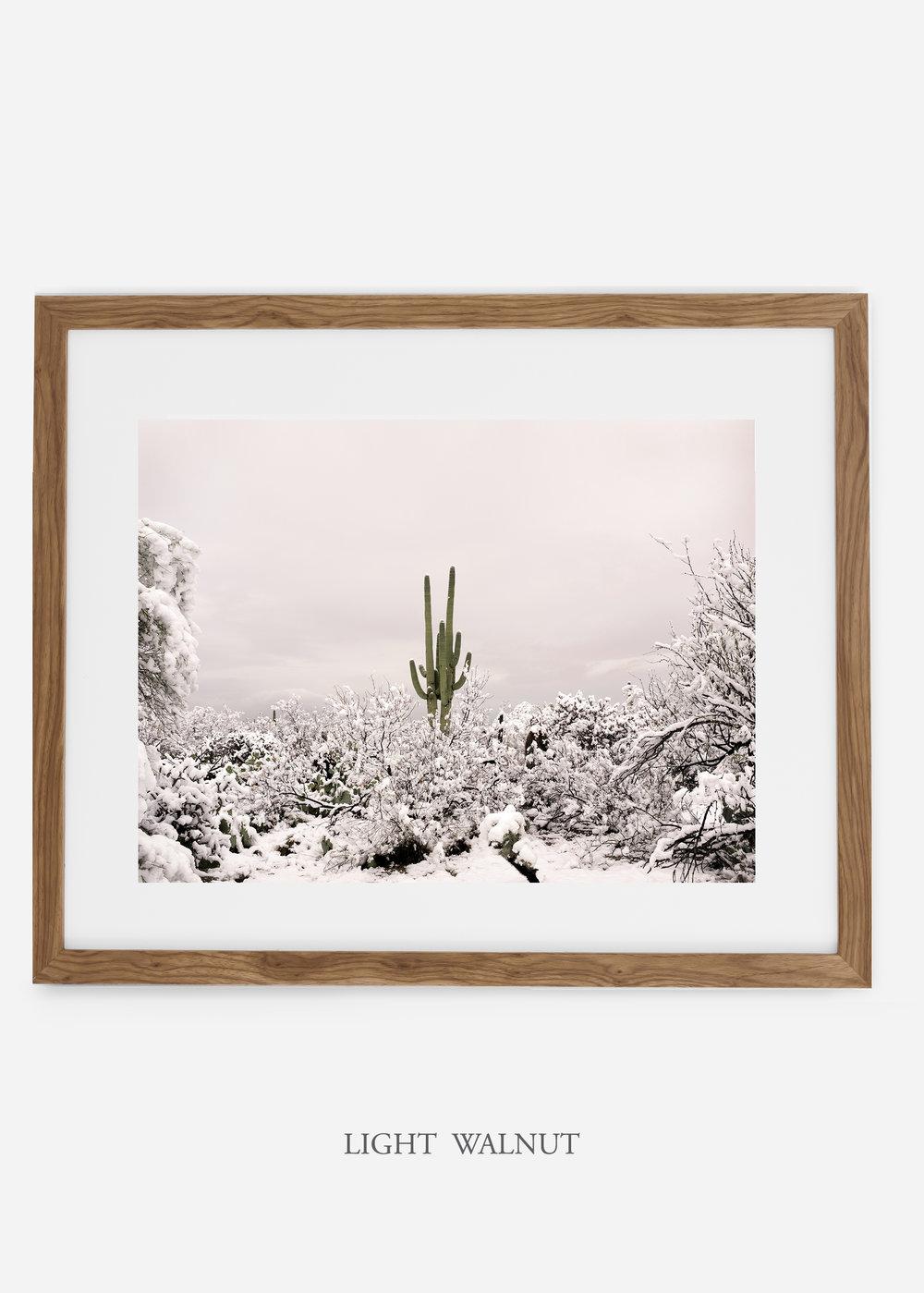 lightwalnutframe-saguaroNo.1-wildercalifornia-art-wallart-cactusprint-homedecor-prints-arizona-botanical-artwork-interiordesign.jpg