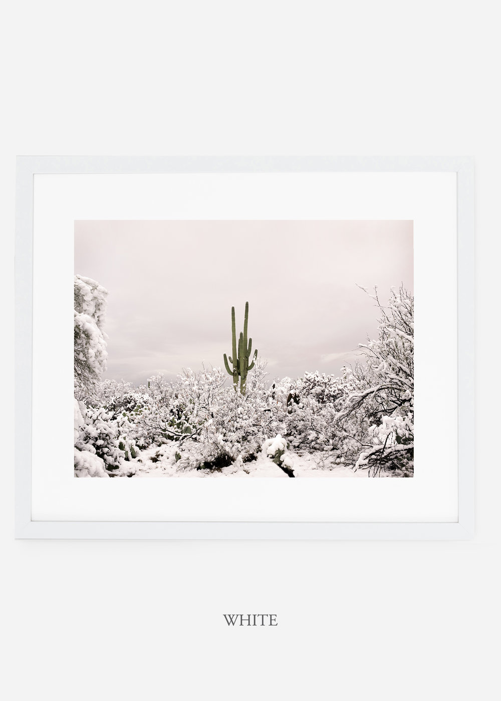 whiteframe-saguaroNo.1-wildercalifornia-art-wallart-cactusprint-homedecor-prints-arizona-botanical-artwork-interiordesign.jpg