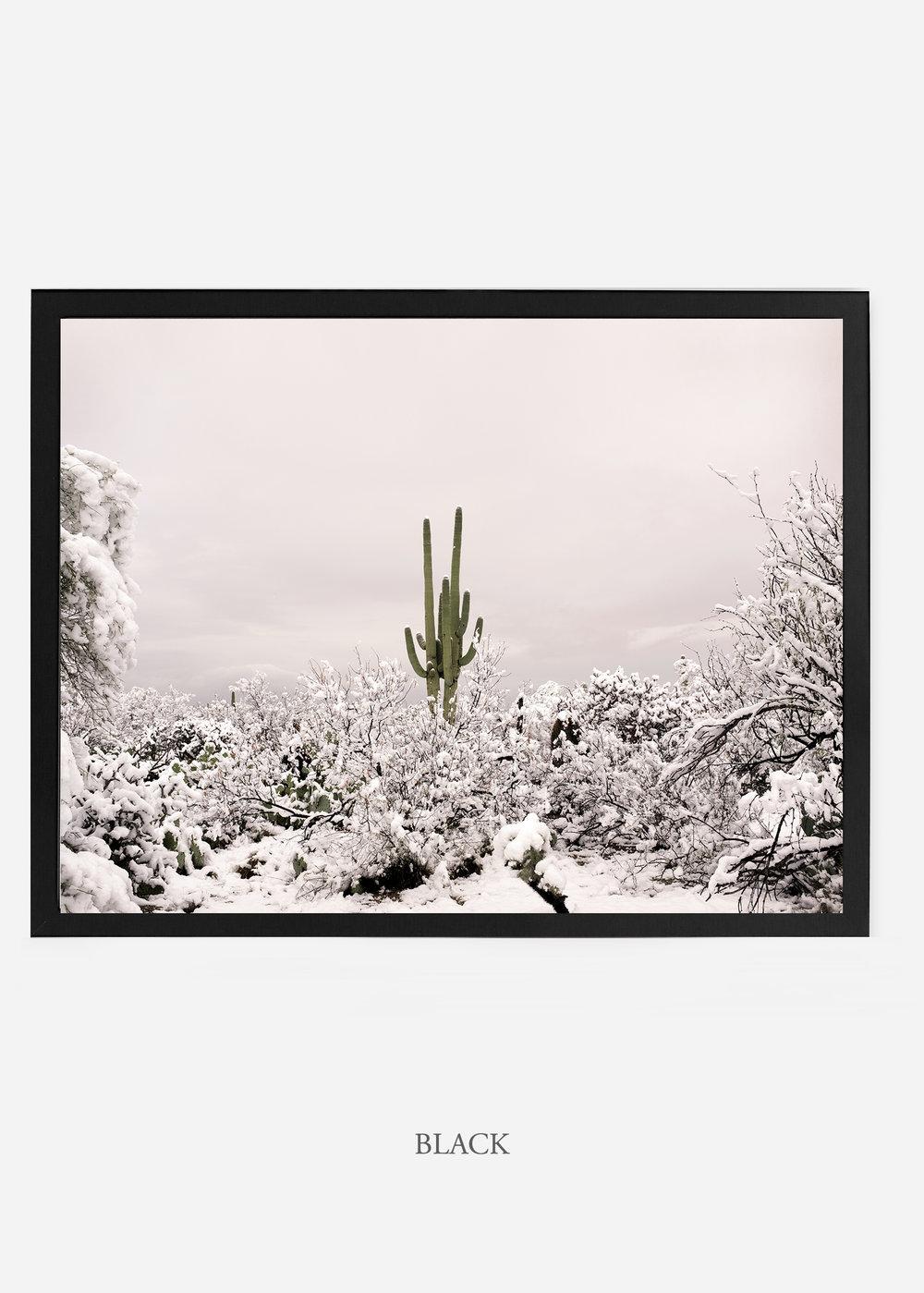 nomat_blackframe-saguaroNo.1-wildercalifornia-art-wallart-cactusprint-homedecor-prints-arizona-botanical-artwork-interiordesign.jpg
