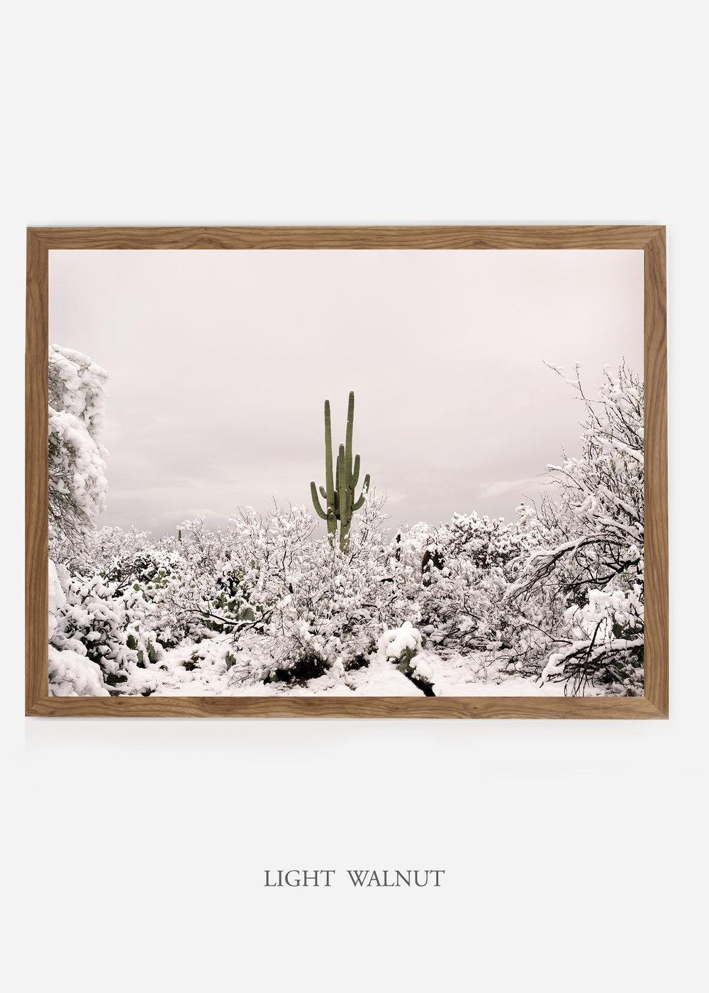 nomat_lightwalnutframe-saguaroNo.1-wildercalifornia-art-wallart-cactusprint-homedecor-prints-arizona-botanical-artwork-interiordesign.jpg