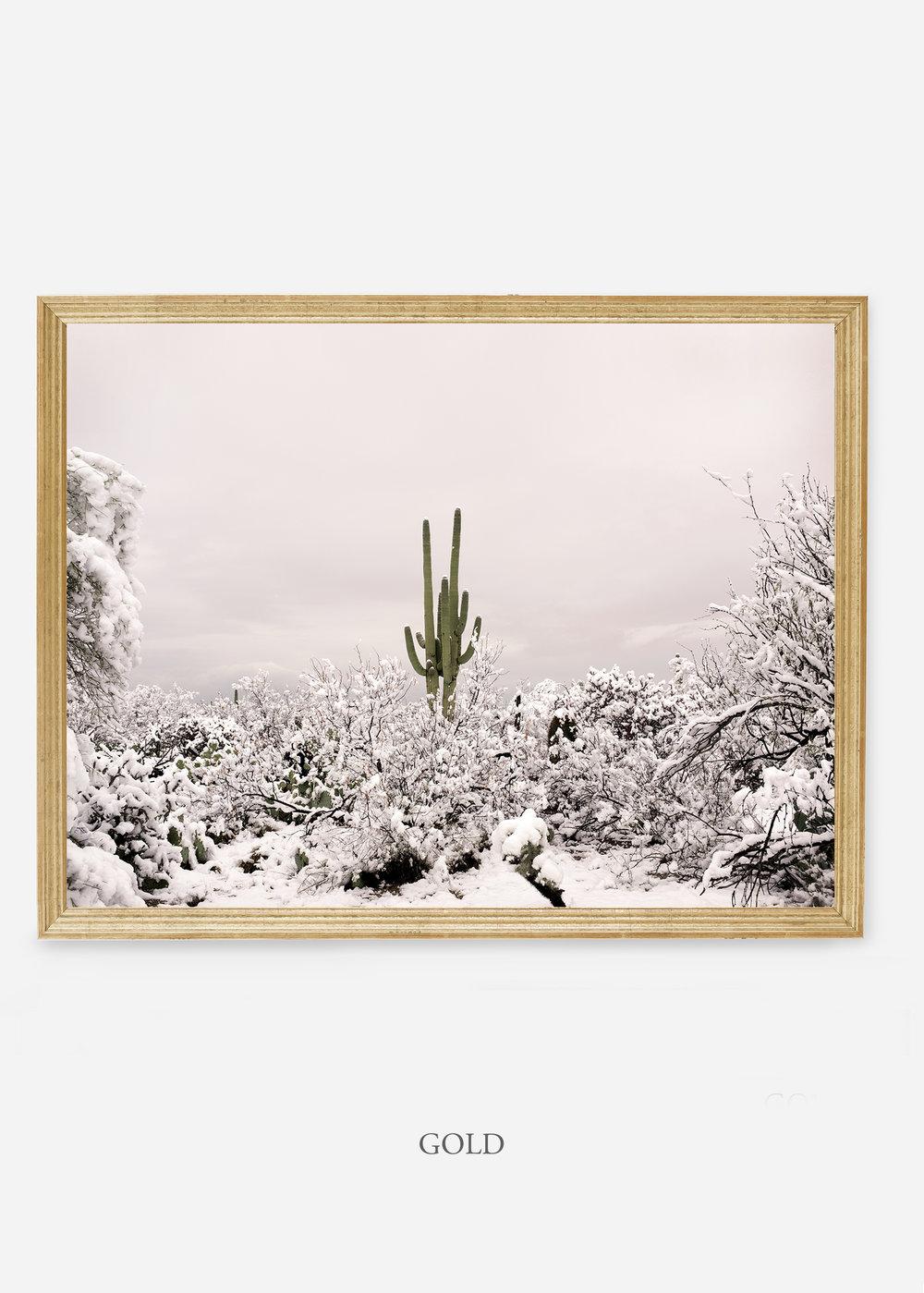 nomat-goldframe-saguaroNo.1-wildercalifornia-art-wallart-cactusprint-homedecor-prints-arizona-botanical-artwork-interiordesign.jpg