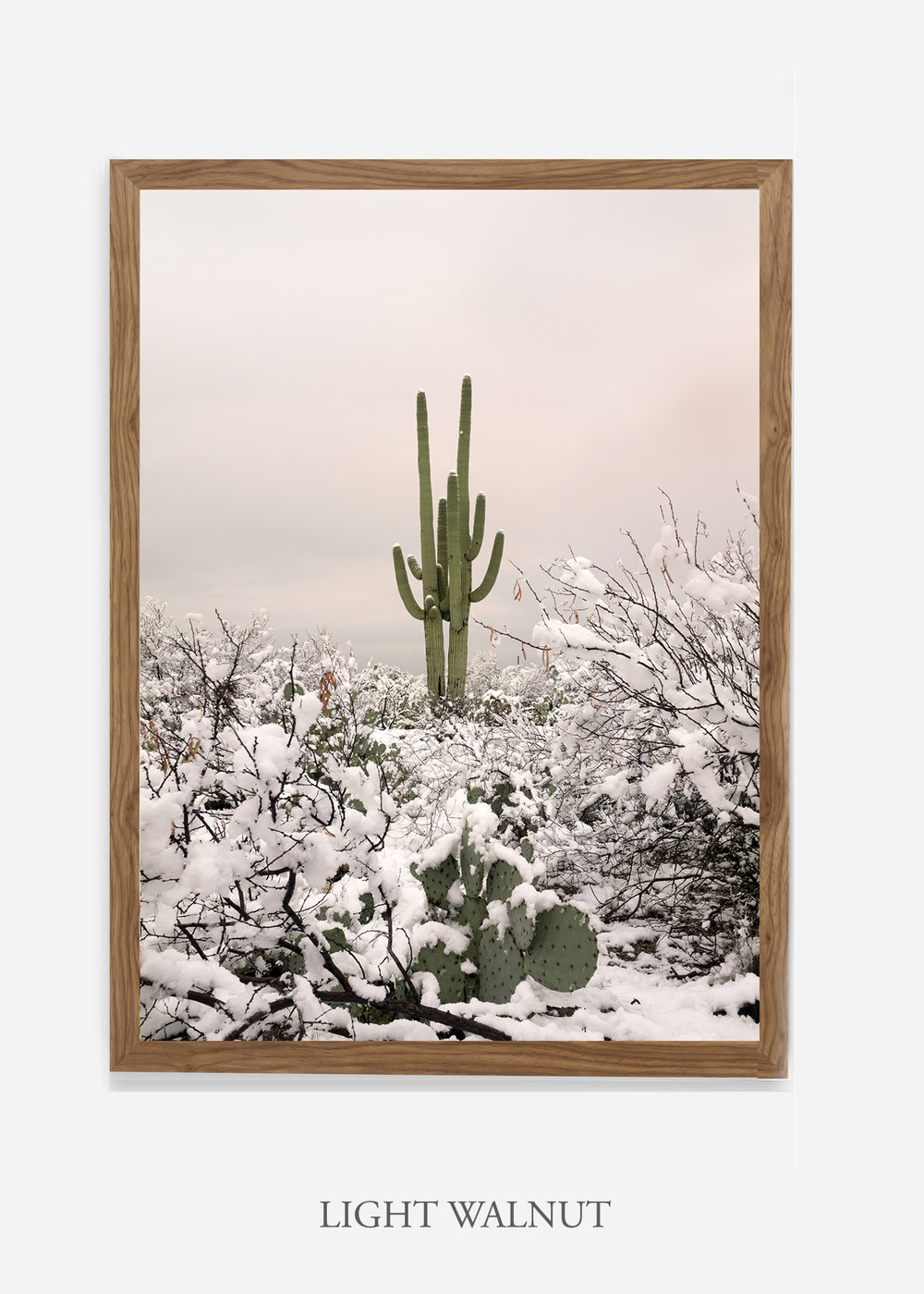 nomat-lightwalnutframe-saguaroNo.2-wildercalifornia-art-wallart-cactusprint-homedecor-prints-arizona-botanical-artwork-interiordesign.jpg