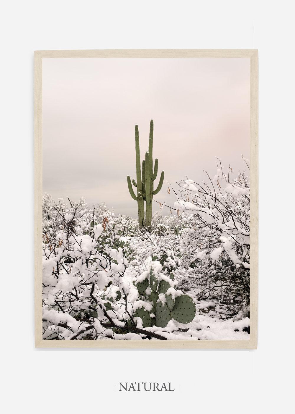 nomat-naturalframe-saguaroNo.2-wildercalifornia-art-wallart-cactusprint-homedecor-prints-arizona-botanical-artwork-interiordesign.jpg