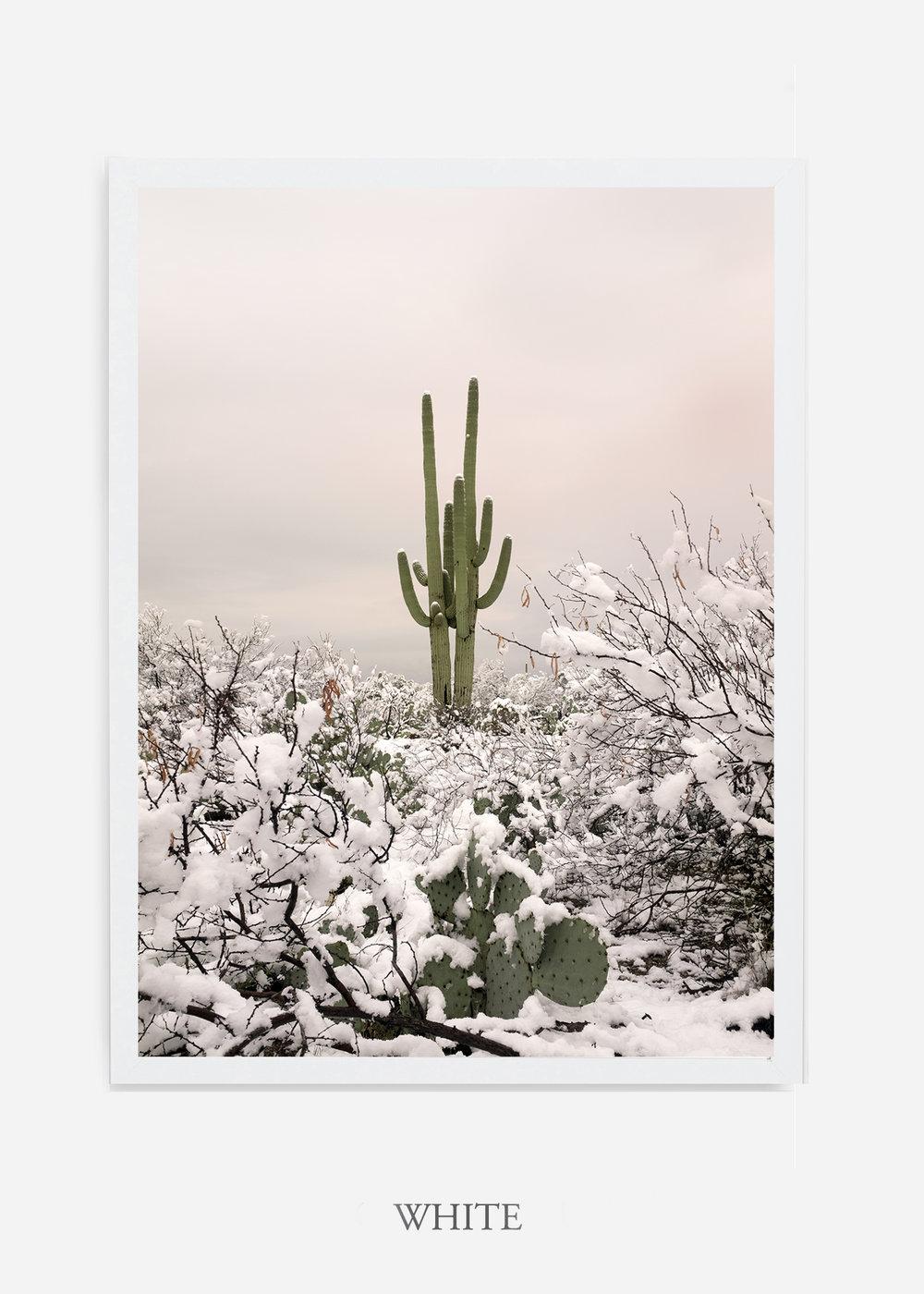 nomat-whiteframe-saguaroNo.2-wildercalifornia-art-wallart-cactusprint-homedecor-prints-arizona-botanical-artwork-interiordesign.jpg