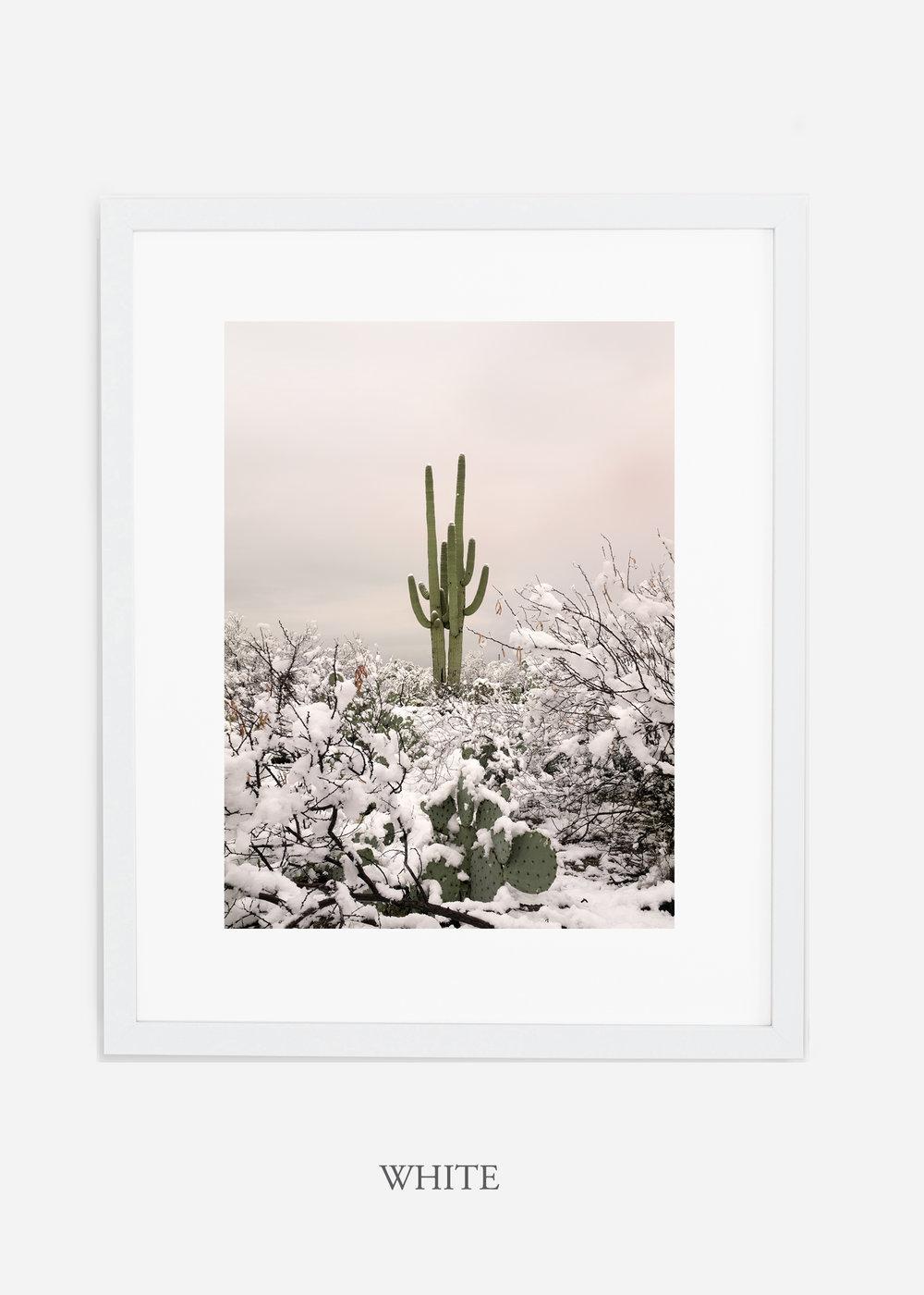 whiteframe-saguaroNo.2-wildercalifornia-art-wallart-cactusprint-homedecor-prints-arizona-botanical-artwork-interiordesign.jpg