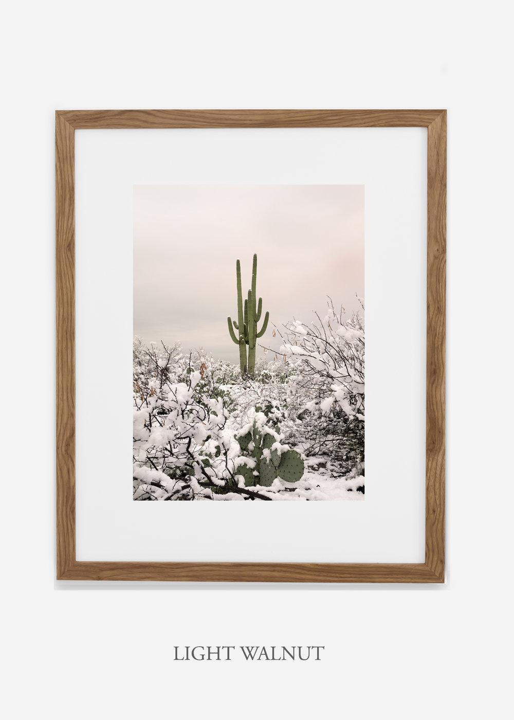 lightwalnutframe-saguaroNo.2-wildercalifornia-art-wallart-cactusprint-homedecor-prints-arizona-botanical-artwork-interiordesign.jpg