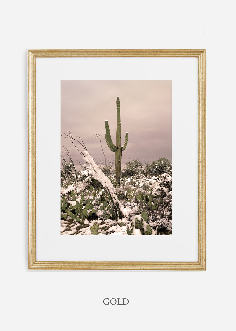 goldframe-saguaroNo.4-wildercalifornia-art-wallart-cactusprint-homedecor-prints-arizona-botanical-artwork-interiordesign.jpg