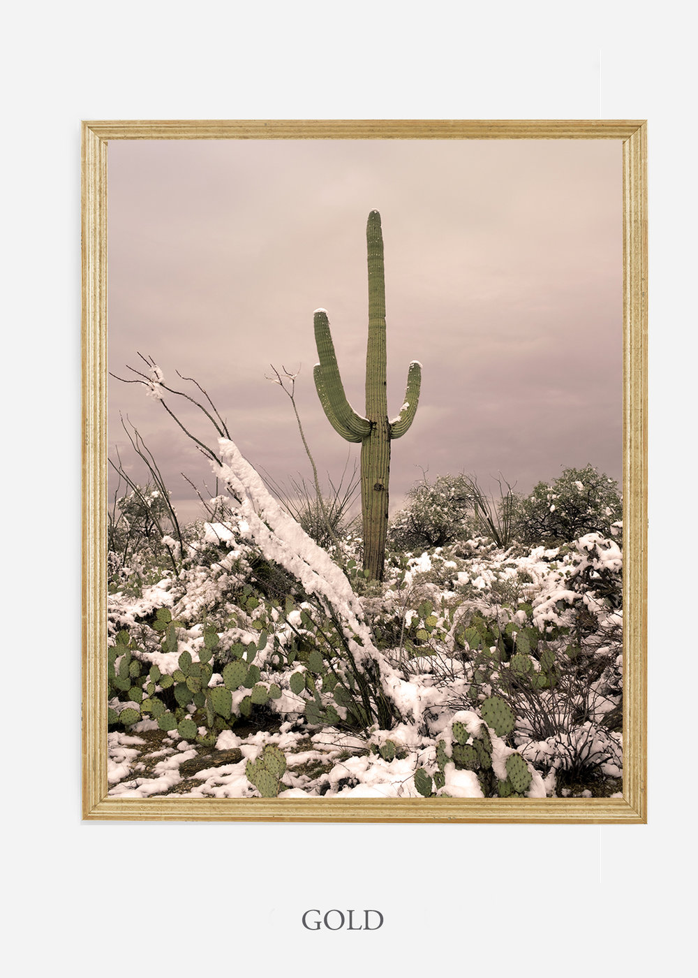nomat-goldframe-saguaroNo.4-wildercalifornia-art-wallart-cactusprint-homedecor-prints-arizona-botanical-artwork-interiordesign.jpg