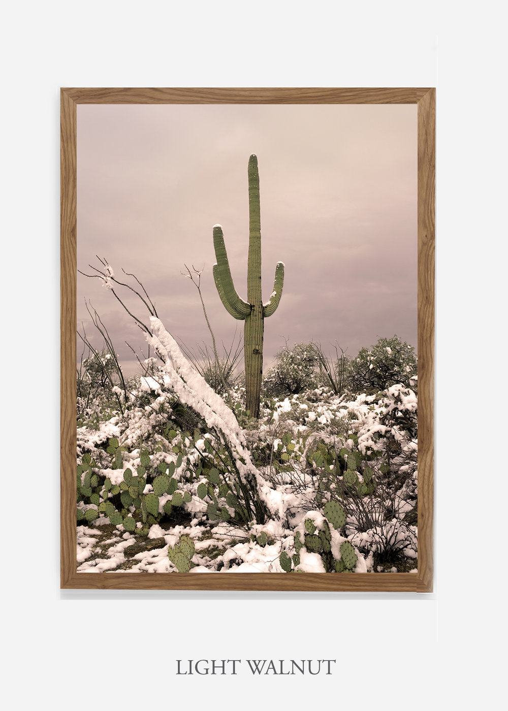 nomat-lightwalnutframe-saguaroNo.4-wildercalifornia-art-wallart-cactusprint-homedecor-prints-arizona-botanical-artwork-interiordesign.jpg