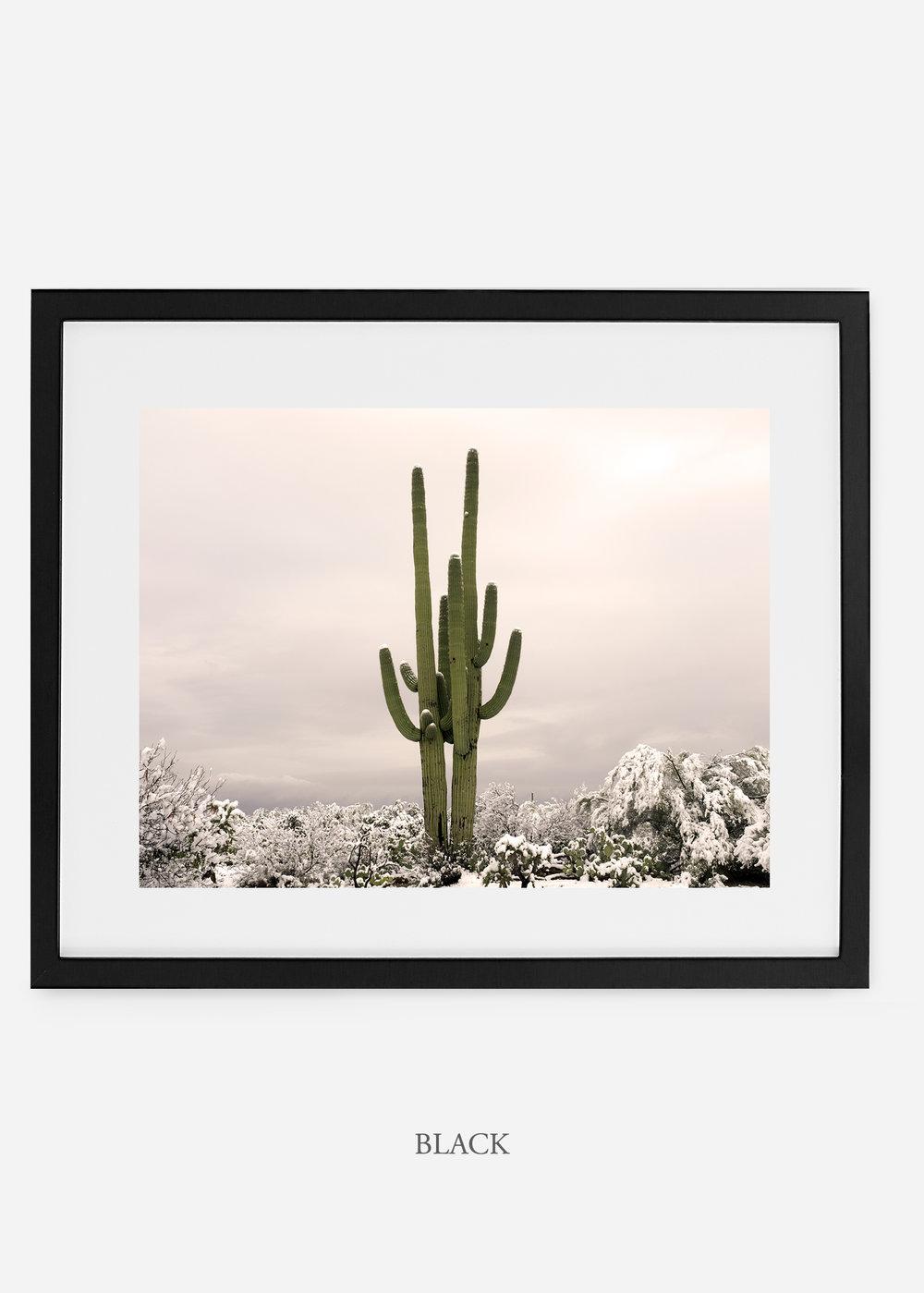 blackframe-saguaroNo.5.-wildercalifornia-art-wallart-cactusprint-homedecor-prints-arizona-botanical-artwork-interiordesign.jpg