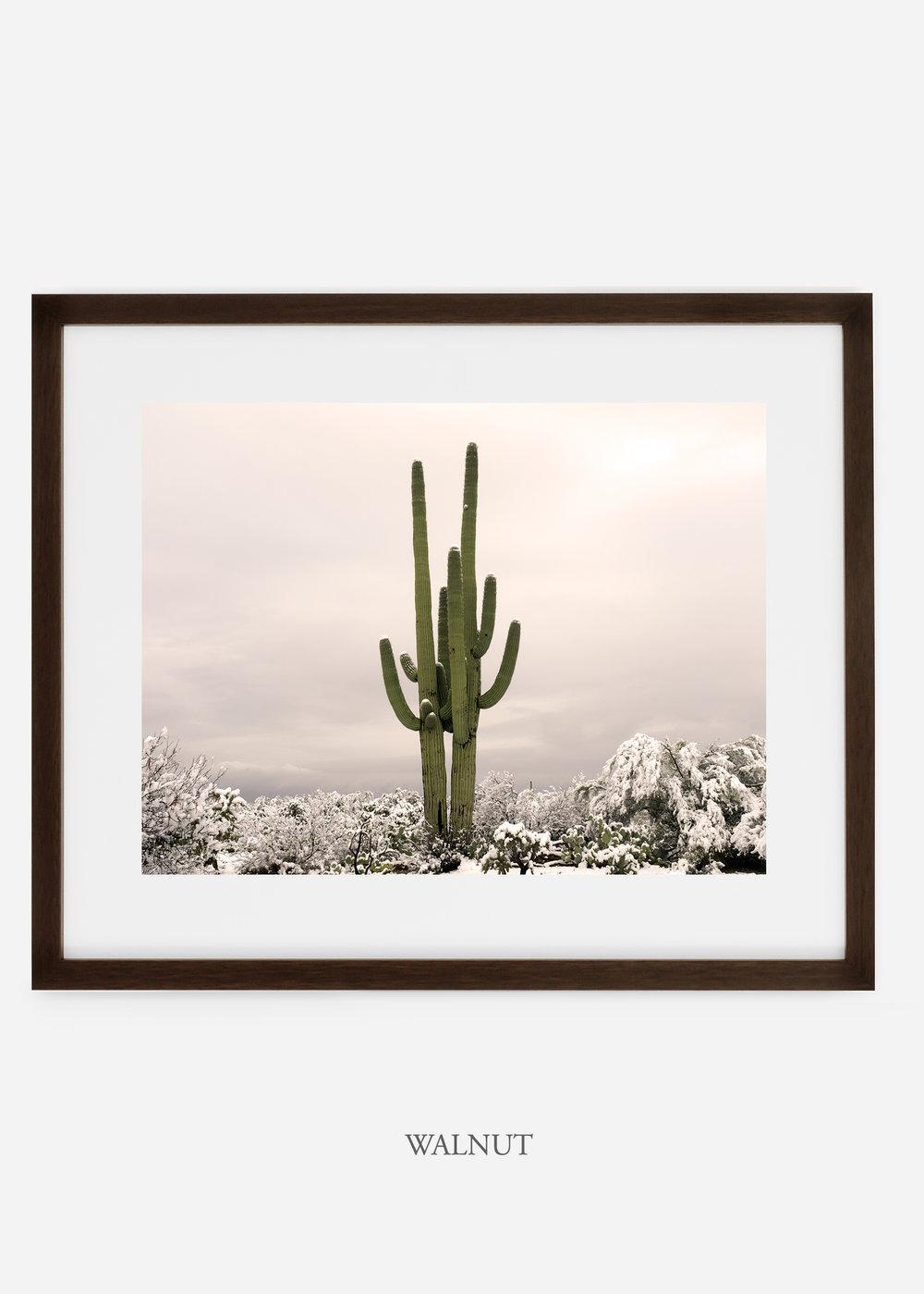 walnutframe-saguaroNo.5-wildercalifornia-art-wallart-cactusprint-homedecor-prints-arizona-botanical-artwork-interiordesign.jpg
