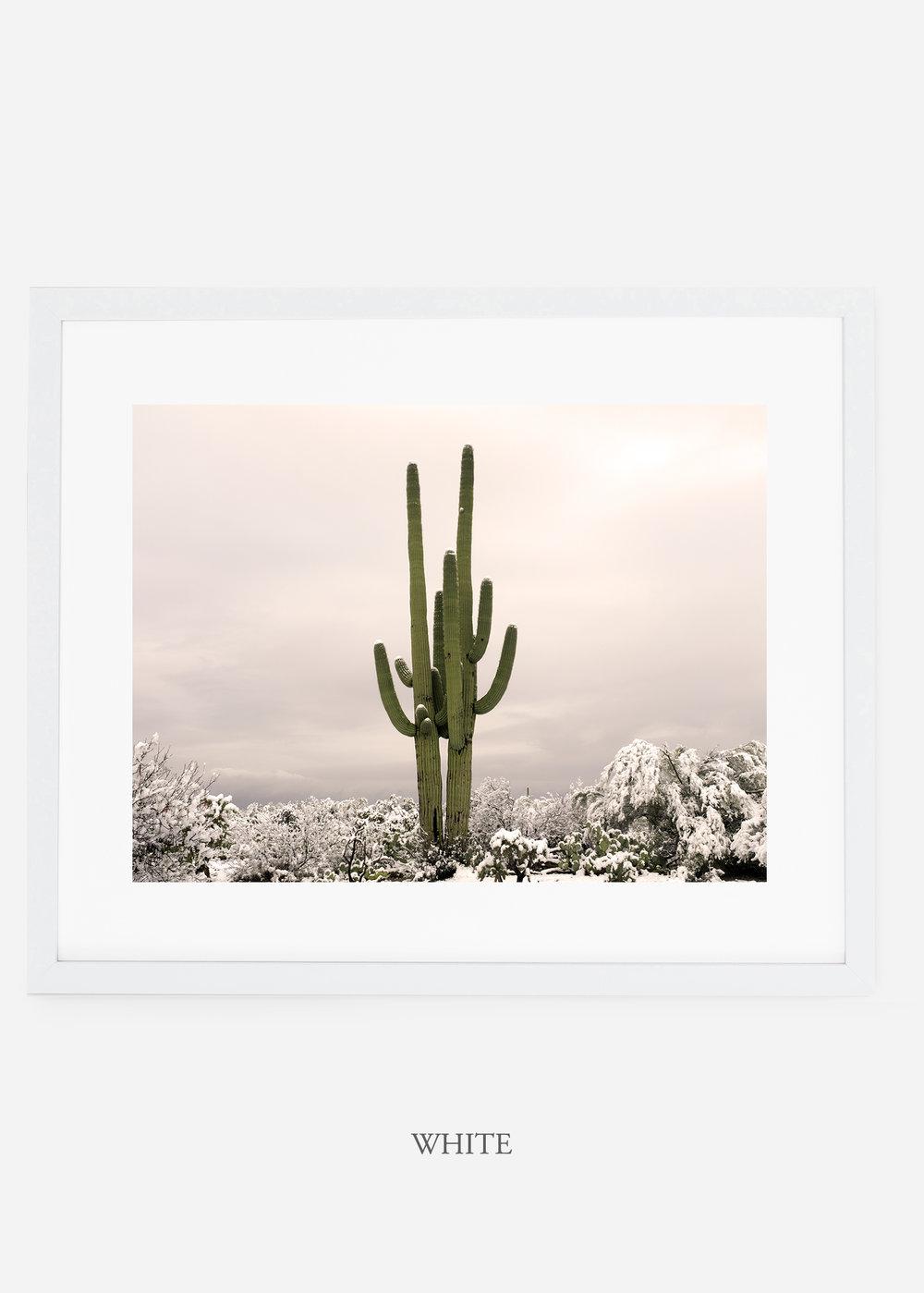 whiteframe-saguaroNo.5-wildercalifornia-art-wallart-cactusprint-homedecor-prints-arizona-botanical-artwork-interiordesign.jpg