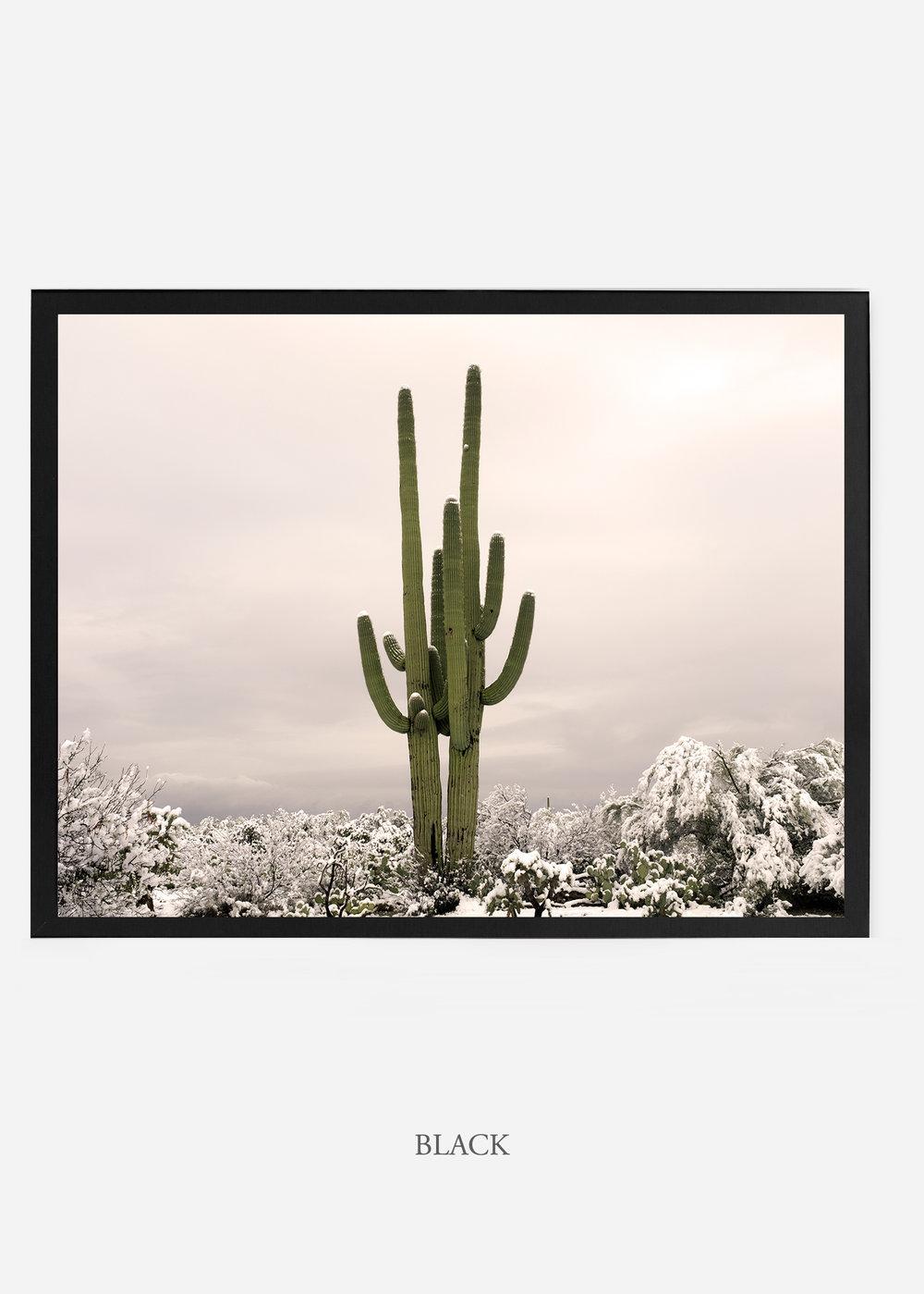nomat_blackframe-saguaroNo.5-wildercalifornia-art-wallart-cactusprint-homedecor-prints-arizona-botanical-artwork-interiordesign.jpg