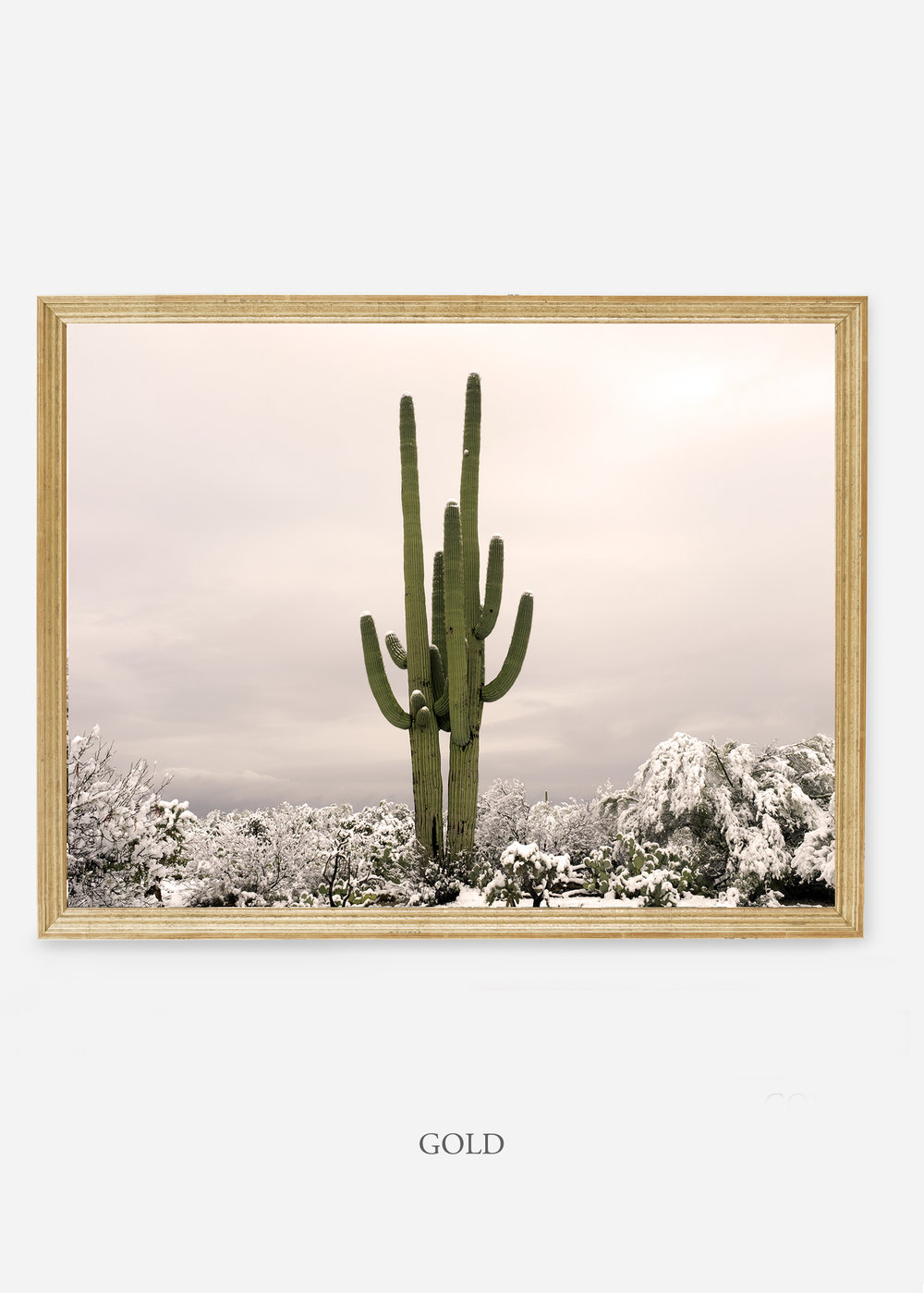 nomat-goldframe-saguaroNo.5-wildercalifornia-art-wallart-cactusprint-homedecor-prints-arizona-botanical-artwork-interiordesign.jpg