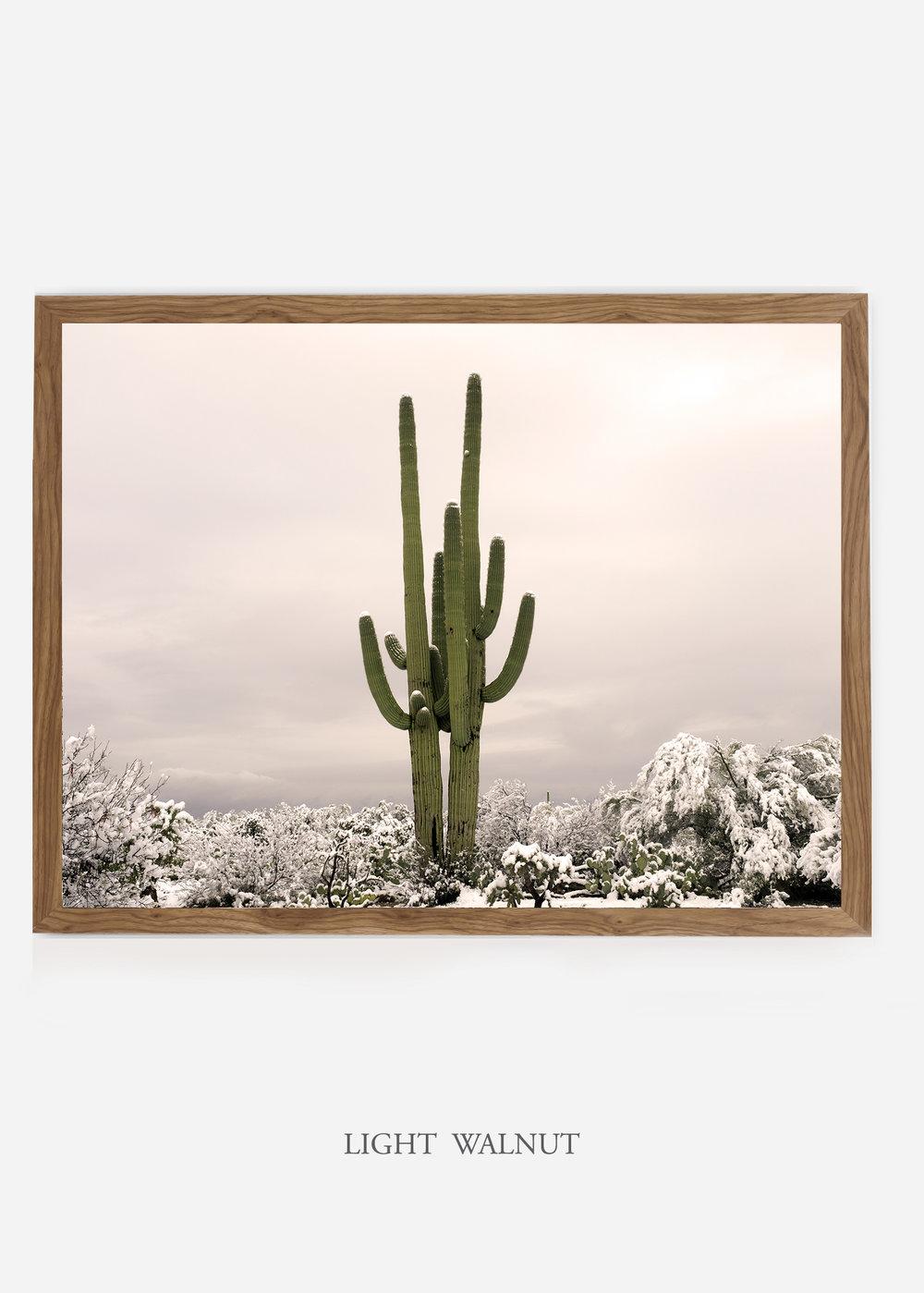 nomat_lightwalnutframe-saguaroNo.5-wildercalifornia-art-wallart-cactusprint-homedecor-prints-arizona-botanical-artwork-interiordesign.jpg