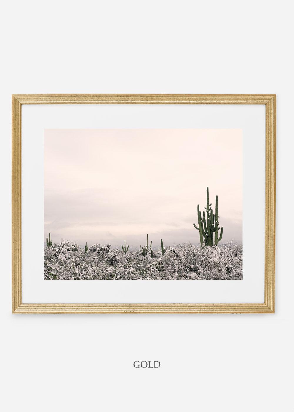 goldframe-saguaroNo.7-wildercalifornia-art-wallart-cactusprint-homedecor-prints-arizona-botanical-artwork-interiordesign.jpg