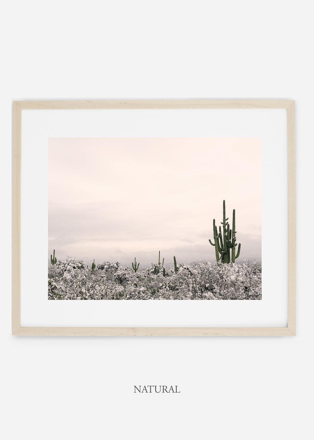naturalframe-saguaroNo.7-wildercalifornia-art-wallart-cactusprint-homedecor-prints-arizona-botanical-artwork-interiordesign.jpg