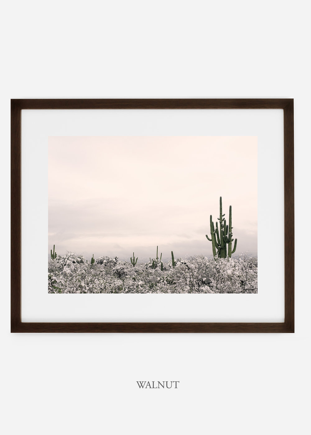 walnutframe-saguaroNo.7-wildercalifornia-art-wallart-cactusprint-homedecor-prints-arizona-botanical-artwork-interiordesign.jpg