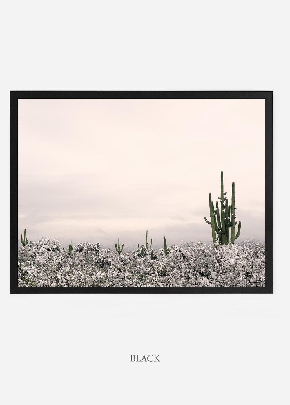 nomat_blackframe-saguaroNo.7-wildercalifornia-art-wallart-cactusprint-homedecor-prints-arizona-botanical-artwork-interiordesign.jpg